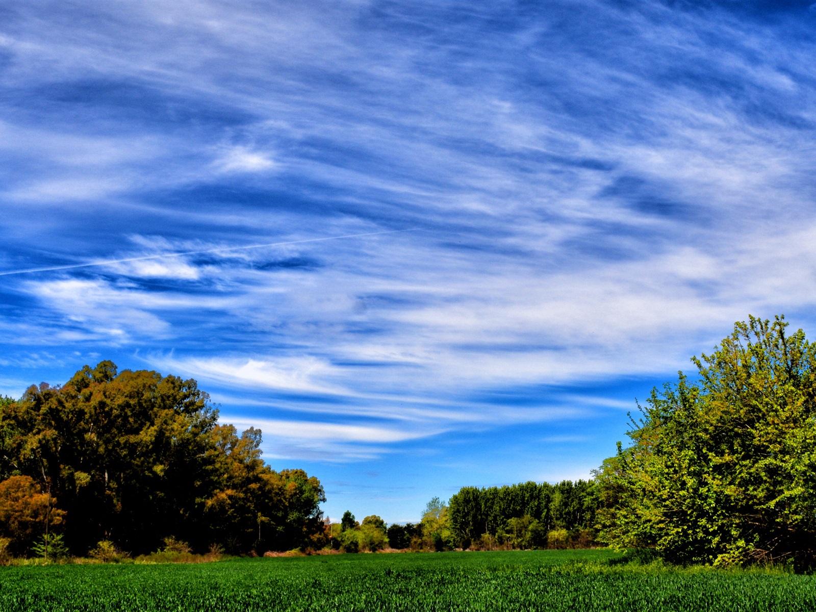 sky blue wallpapers download