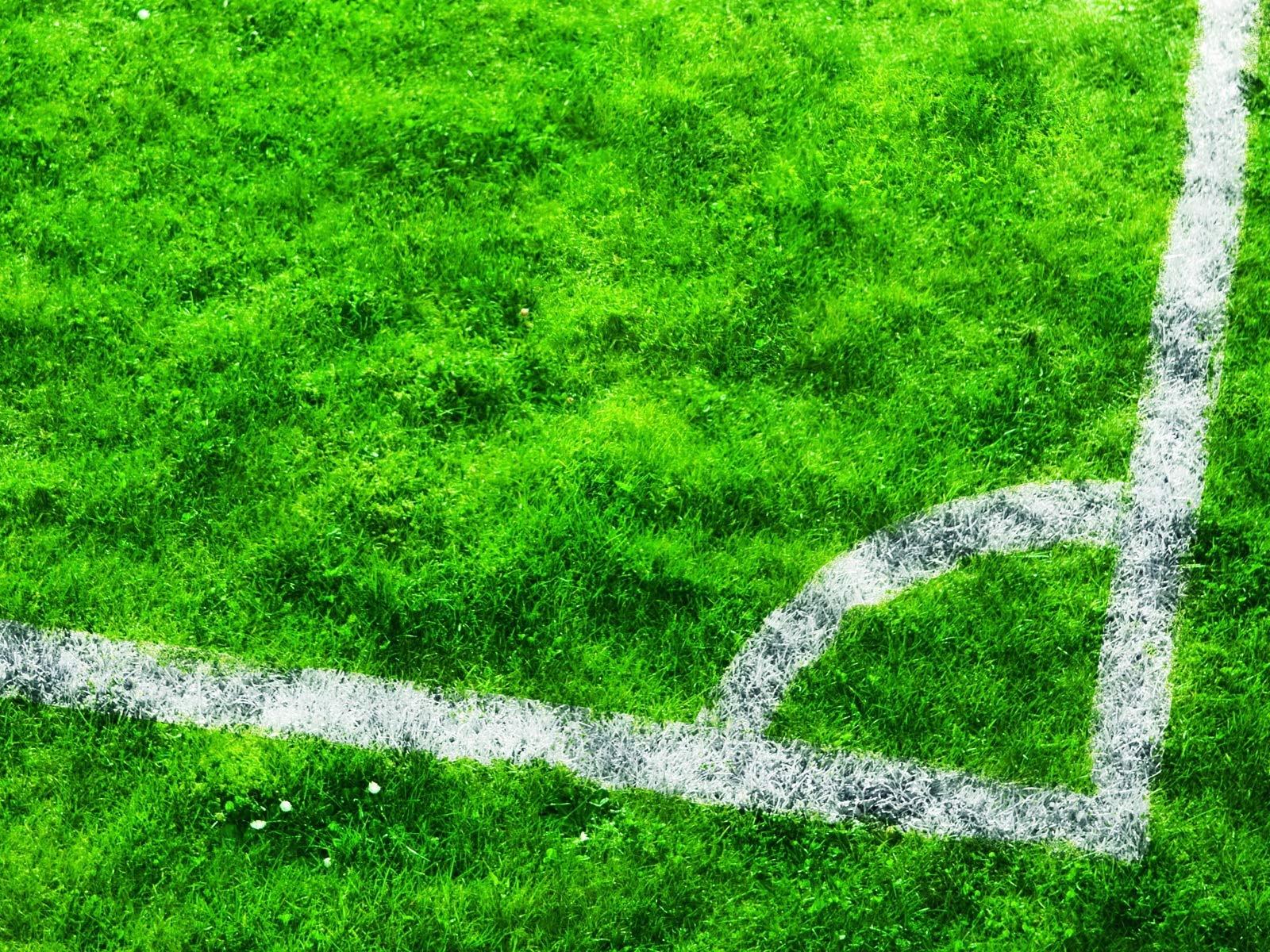 Stadium Soccer Football Sports Qhd Wallpaper 2560x2560: 배경 화면 축구장, 잔디 1920x1200 HD 그림, 이미지