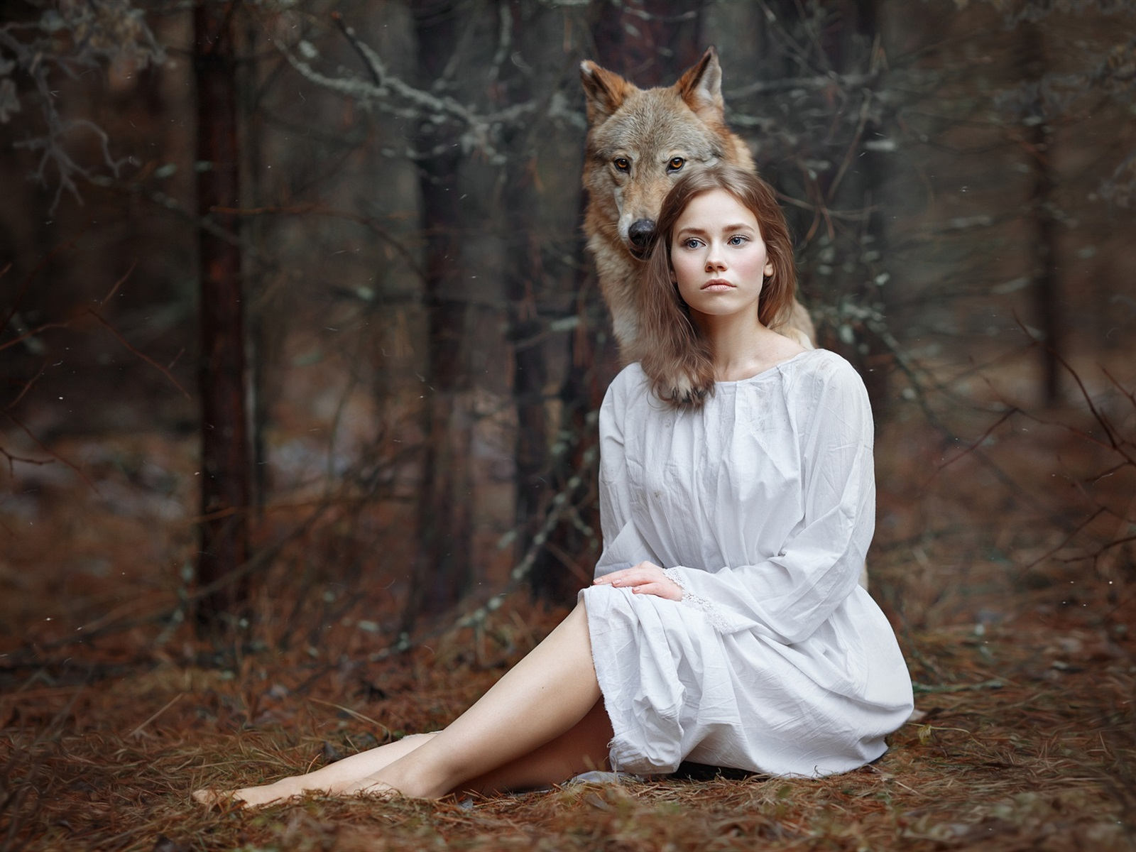 Работать, картинки волки и девушки осень