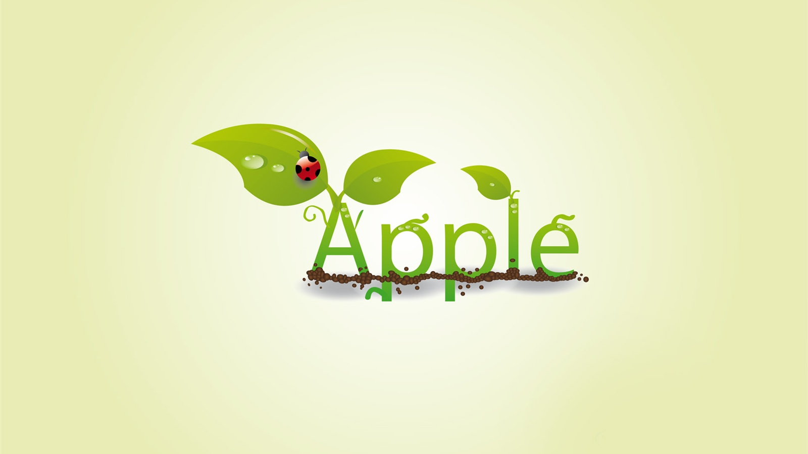 Creative apple leaf ladybug drops wallpaper - 1600x900