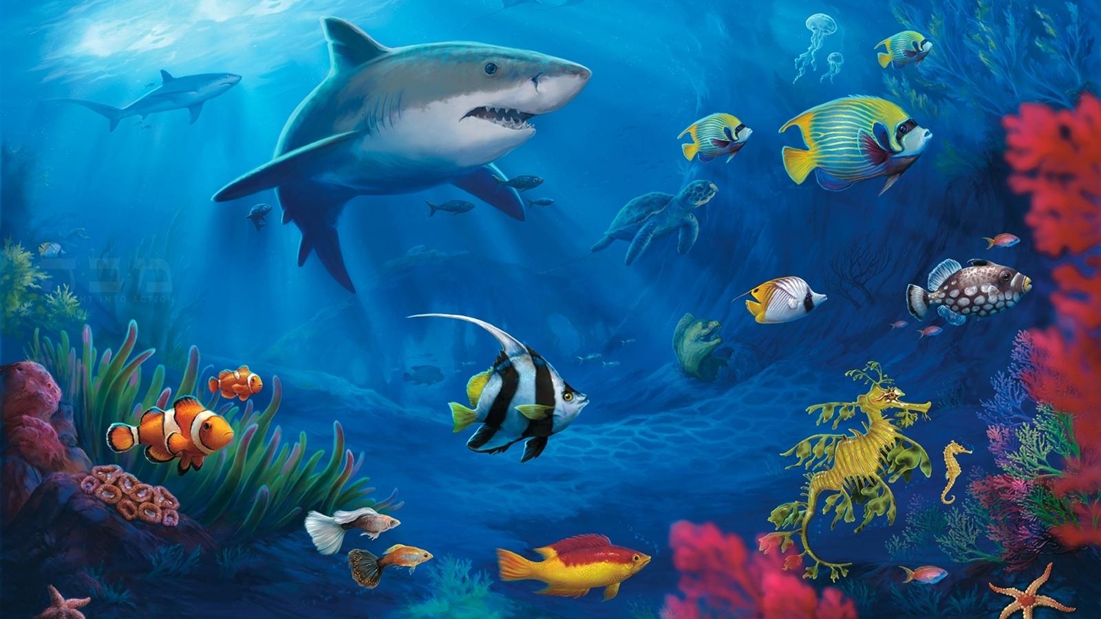 水中世界では、サメ 壁紙 - 1600x900    1600x900 壁紙ダウンロード