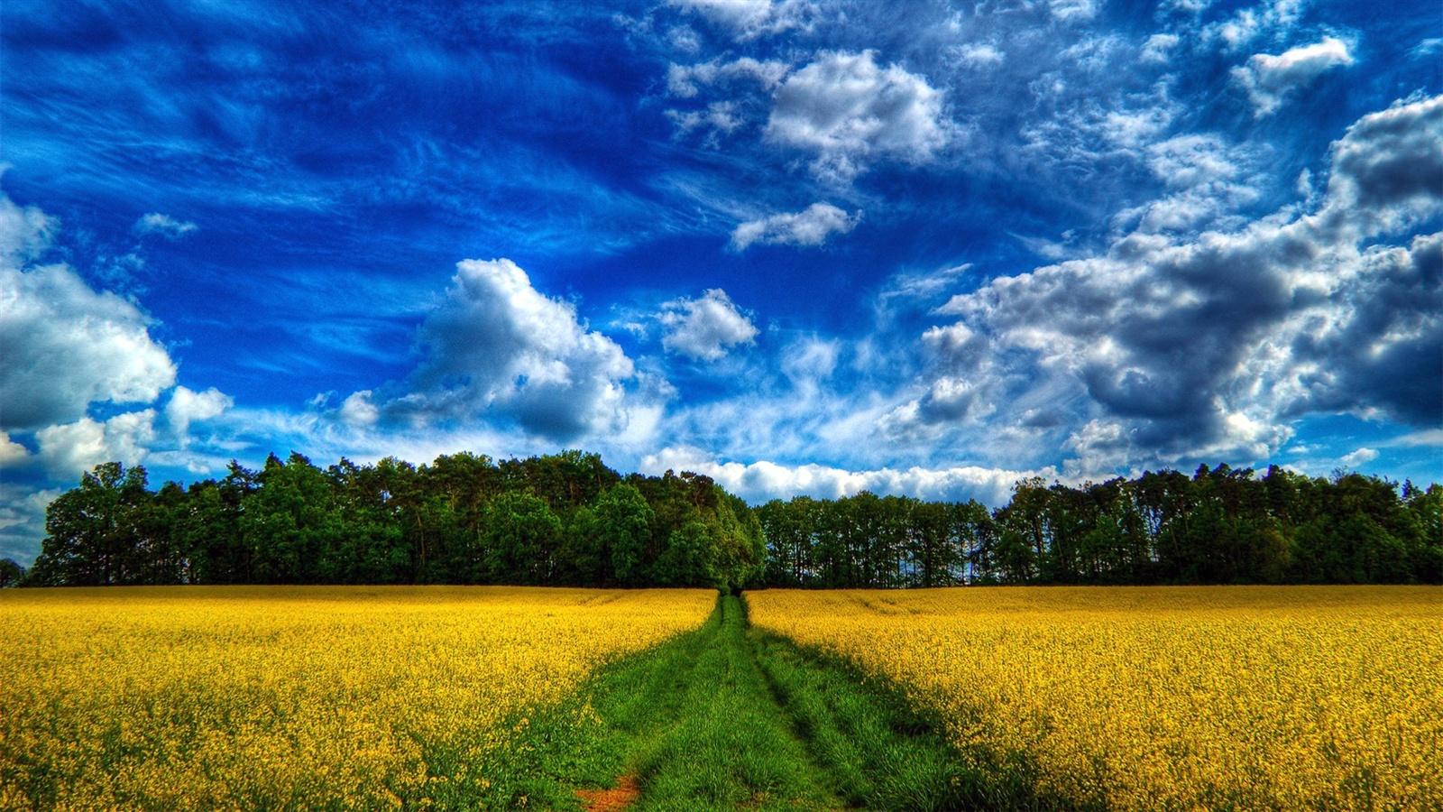Красивые картинки неба и полей