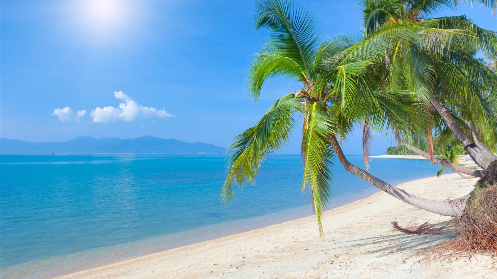 Hd Tropical Island Beach Paradise Wallpapers And Backgrounds: 壁纸 热带海滩,椰树,大海,天空,云,阳光 2560x1600 HD 高清壁纸, 图片, 照片
