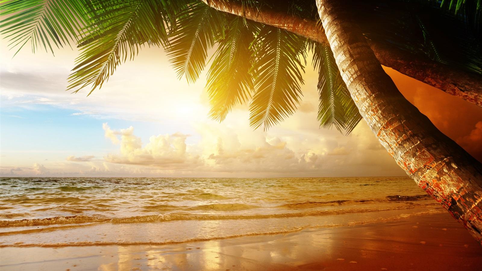 hintergrundbilder beschreibung tropische landschaft - photo #20