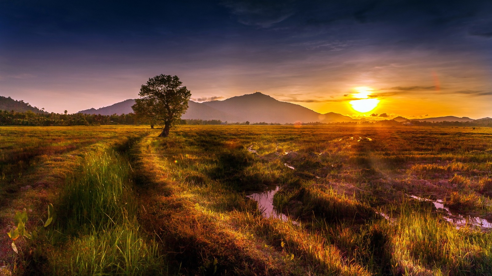 summer sunset landscape wallpaper - photo #11
