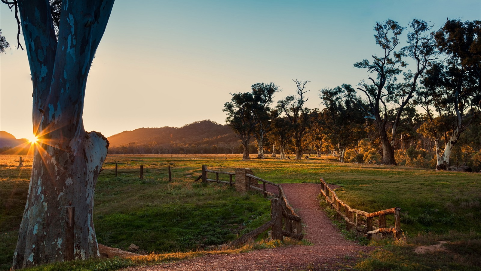 일몰도, 나무, 울타리, 잔디 배경 화면  1600x900 배경 화면 ...