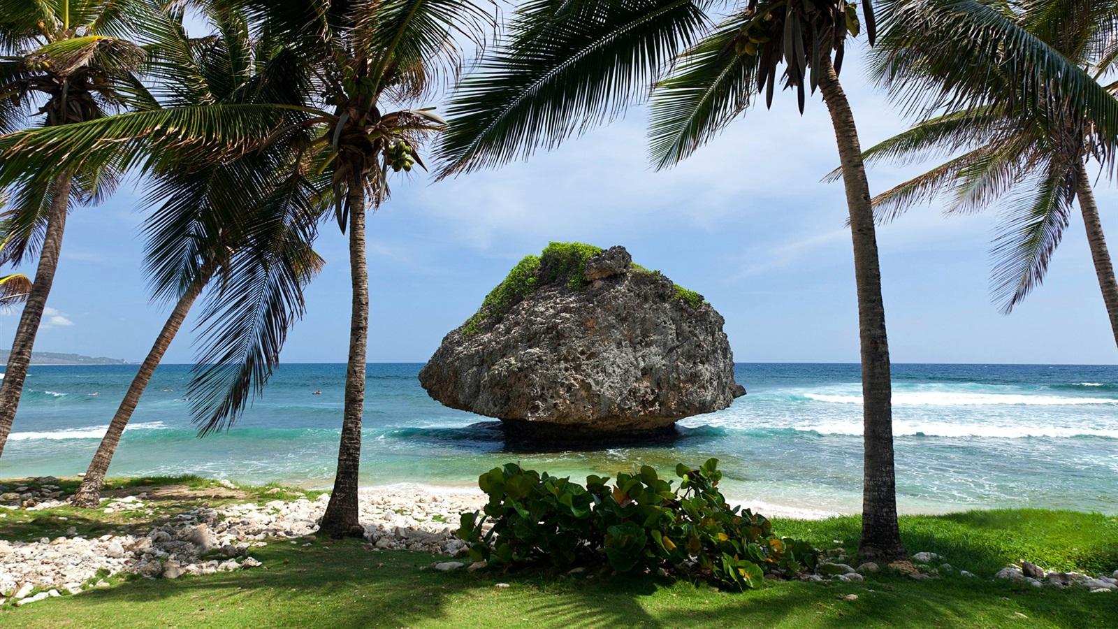 hintergrundbilder beschreibung tropische landschaft - photo #30