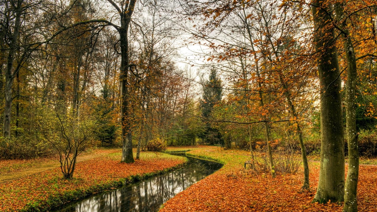 autumn nature river - photo #42