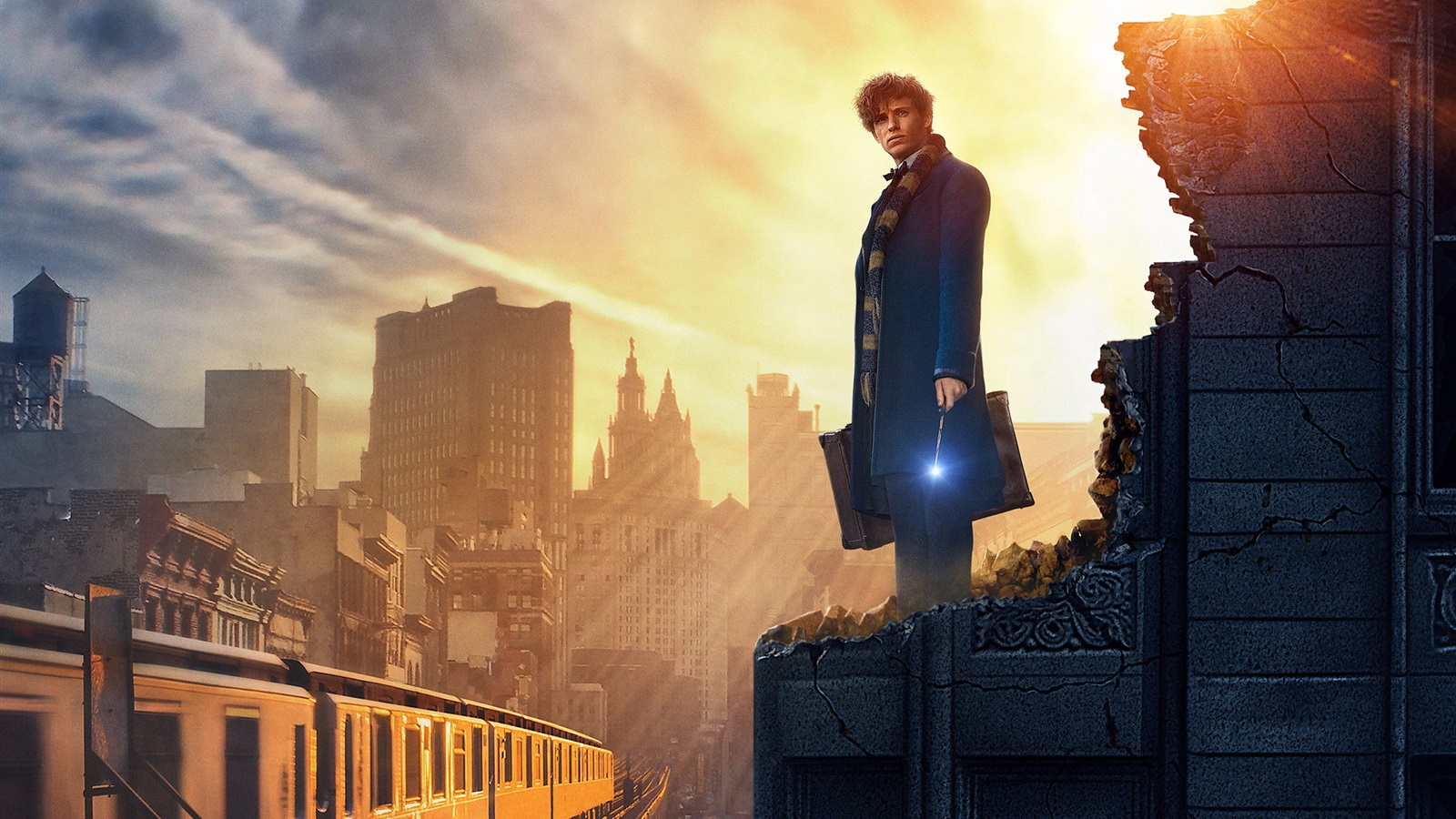 fantastic beasts and where to find them 2016 wallpaper