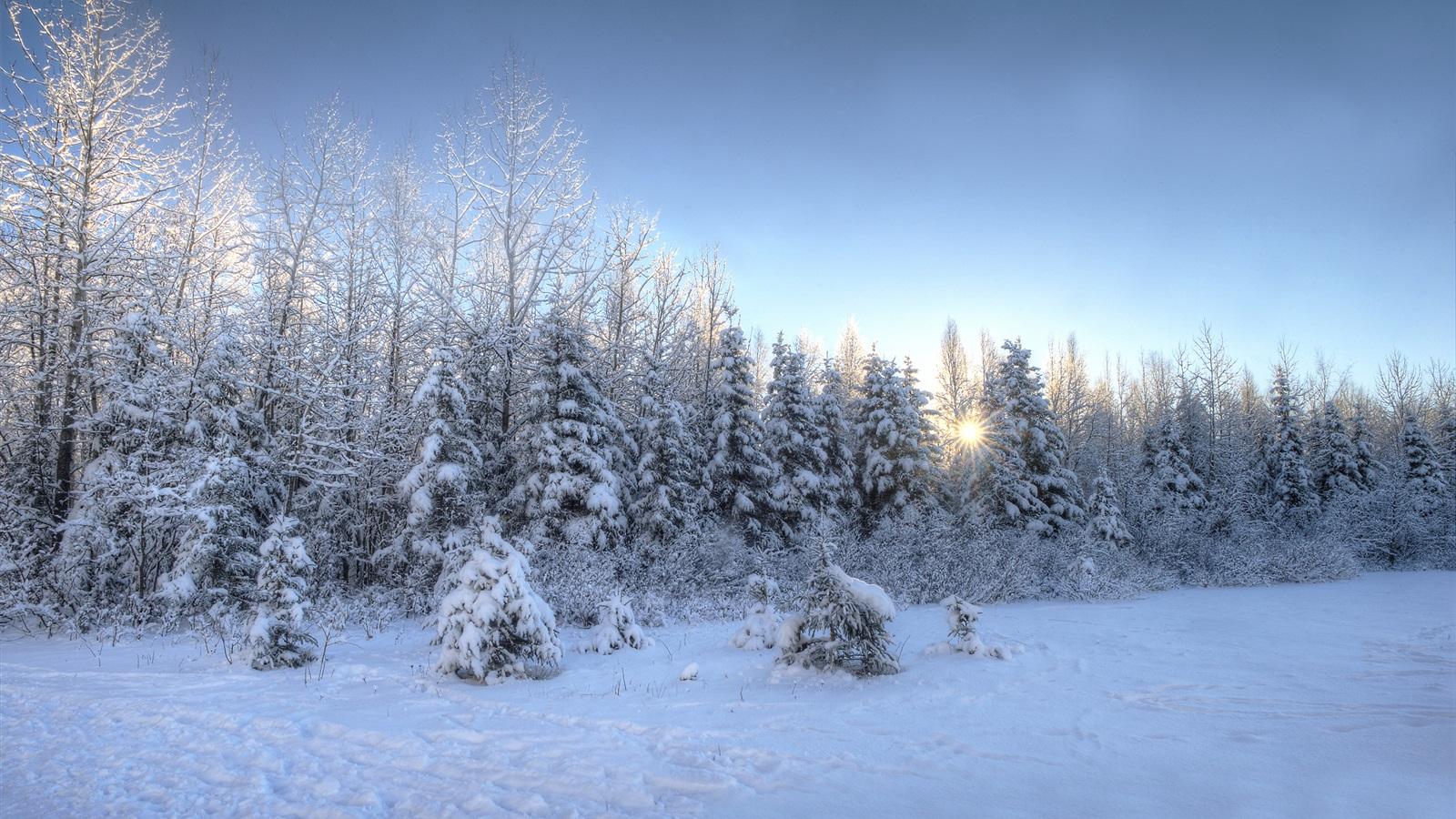 1600x900 hd desktop wallpaper winter - photo #49