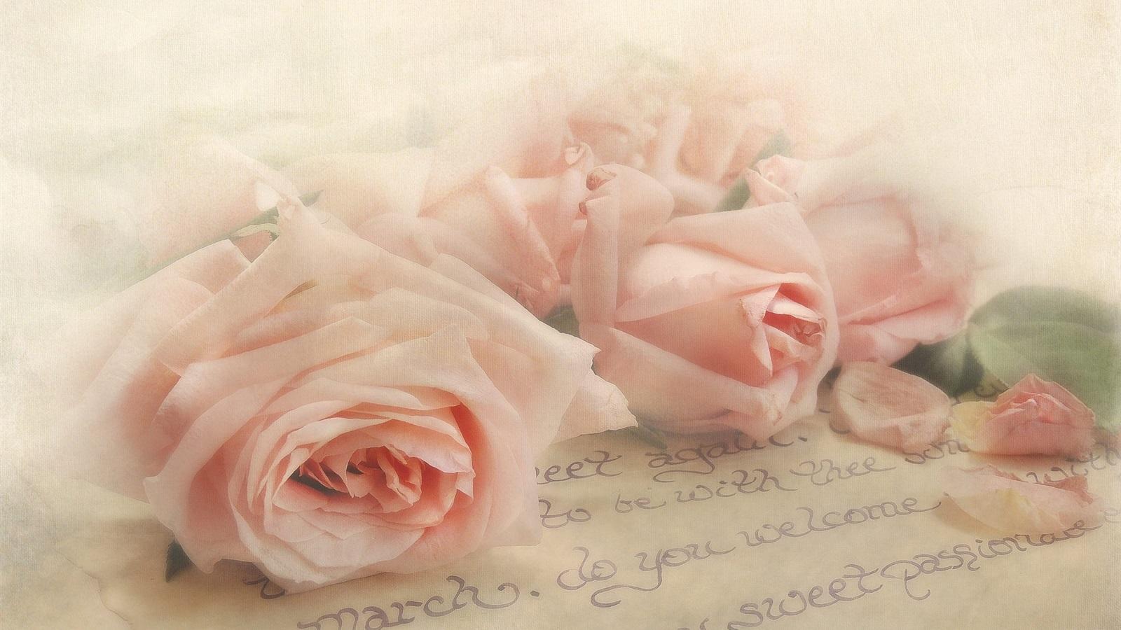 Роза на письме картинки
