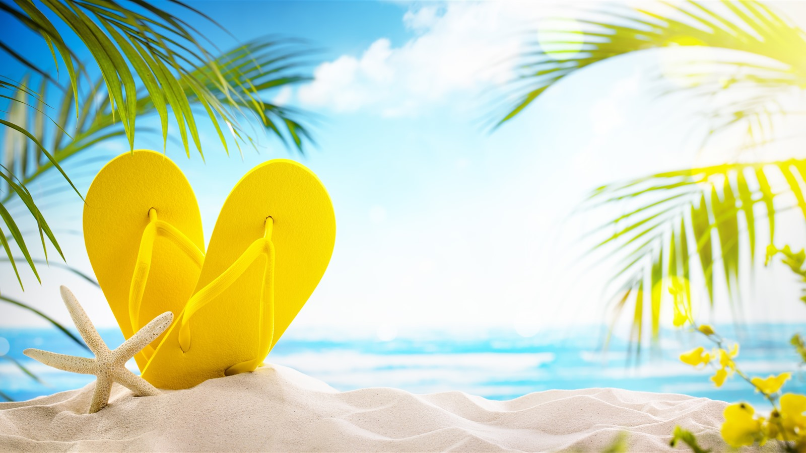 Wallpaper Beach Sands Yellow Slippers Palm Leaves Glare