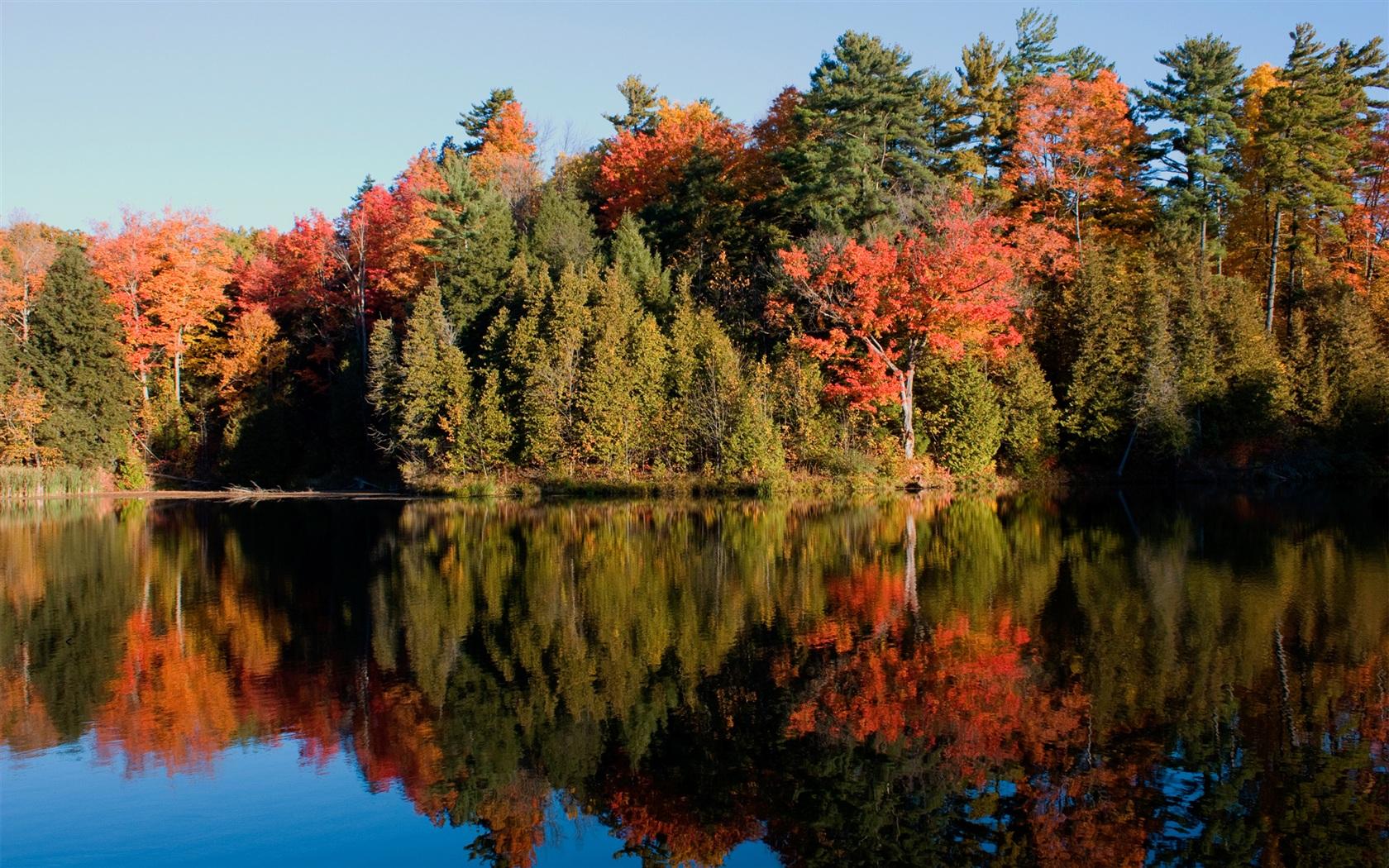 Miroir de l 39 eau du bois fonds d 39 cran 1680x1050 fonds d for Miroir de l eau