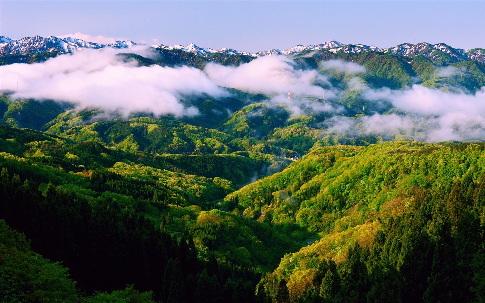 日本本州石川、春の朝、美しい自然の風景、霧、山 壁紙 - 1680x10...   日本本州石川