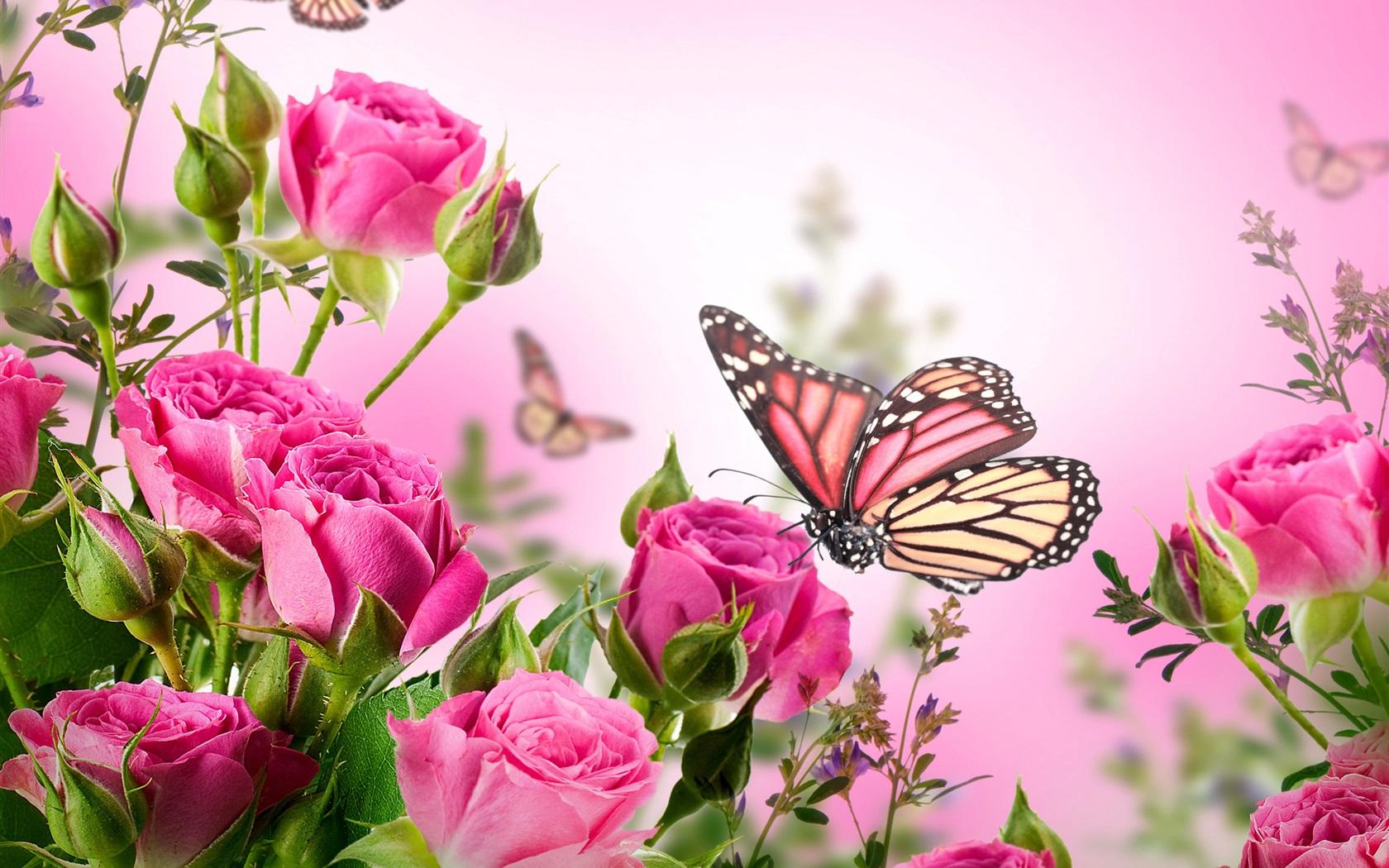 ピンクのバラ、花、蝶 壁紙 | 1680x1050 壁紙 ... Animated Pink Butterflies