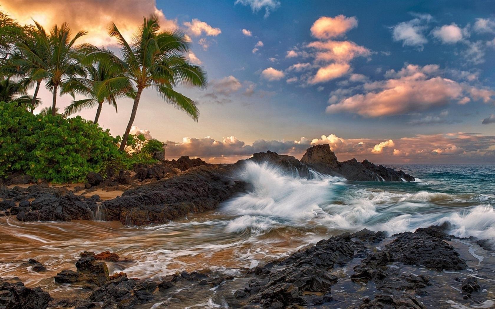 マウイ島 ハワイ 静かな 海 岩 ヤシの木 ビーチ 640x960 Iphone