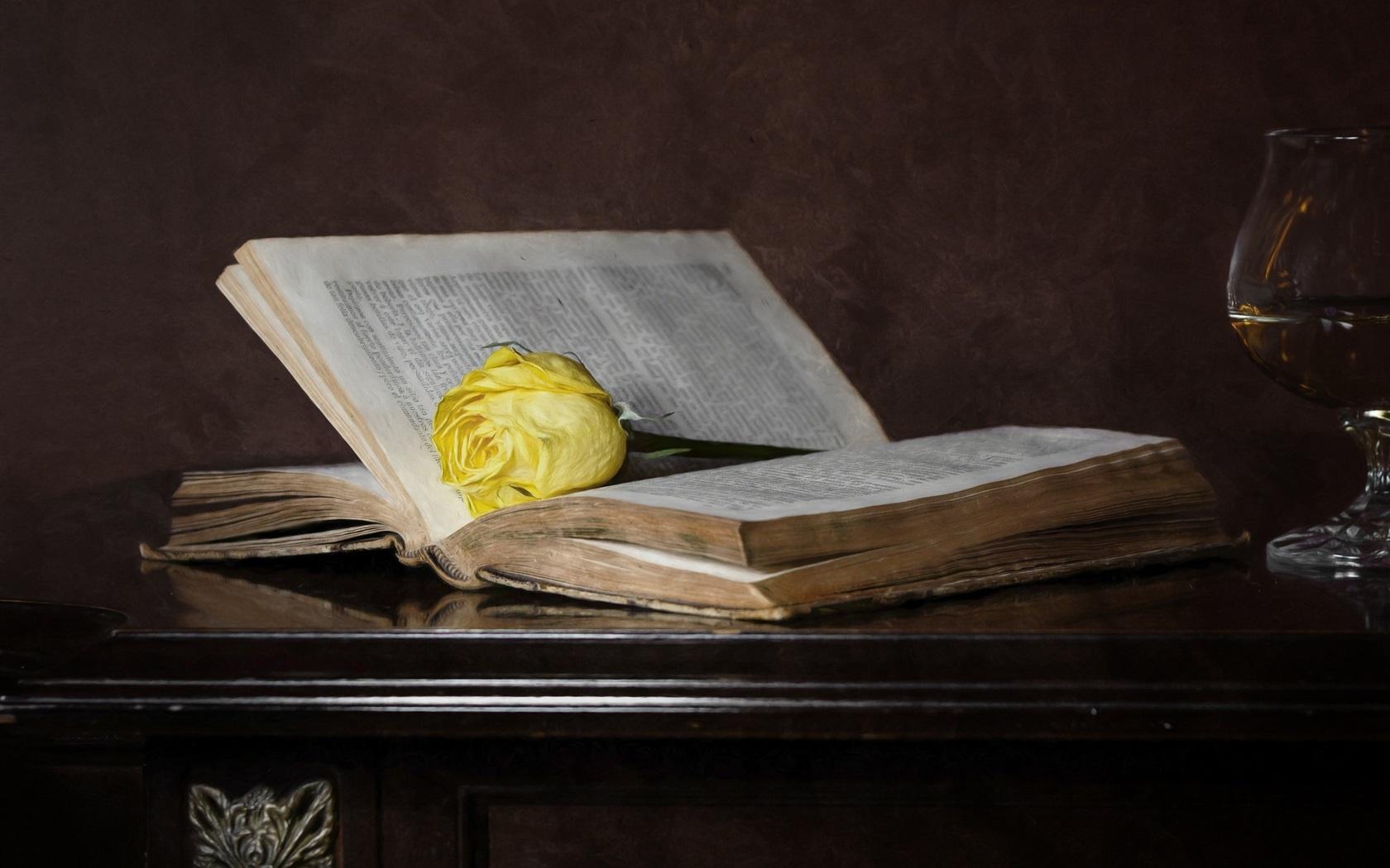 Buenos días, tardes, noches. Old-book-yellow-rose_1680x1050