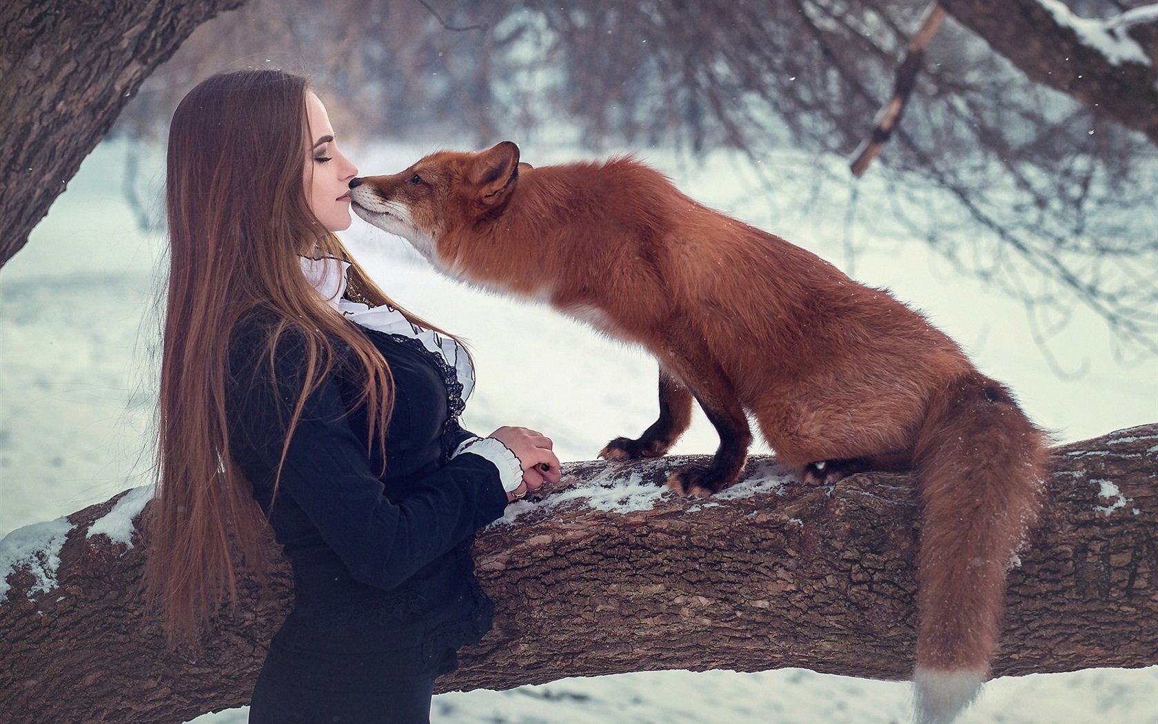 Wallpaper Girl And Fox, Kiss, Snow, Winter 1920X1200 Hd -7649