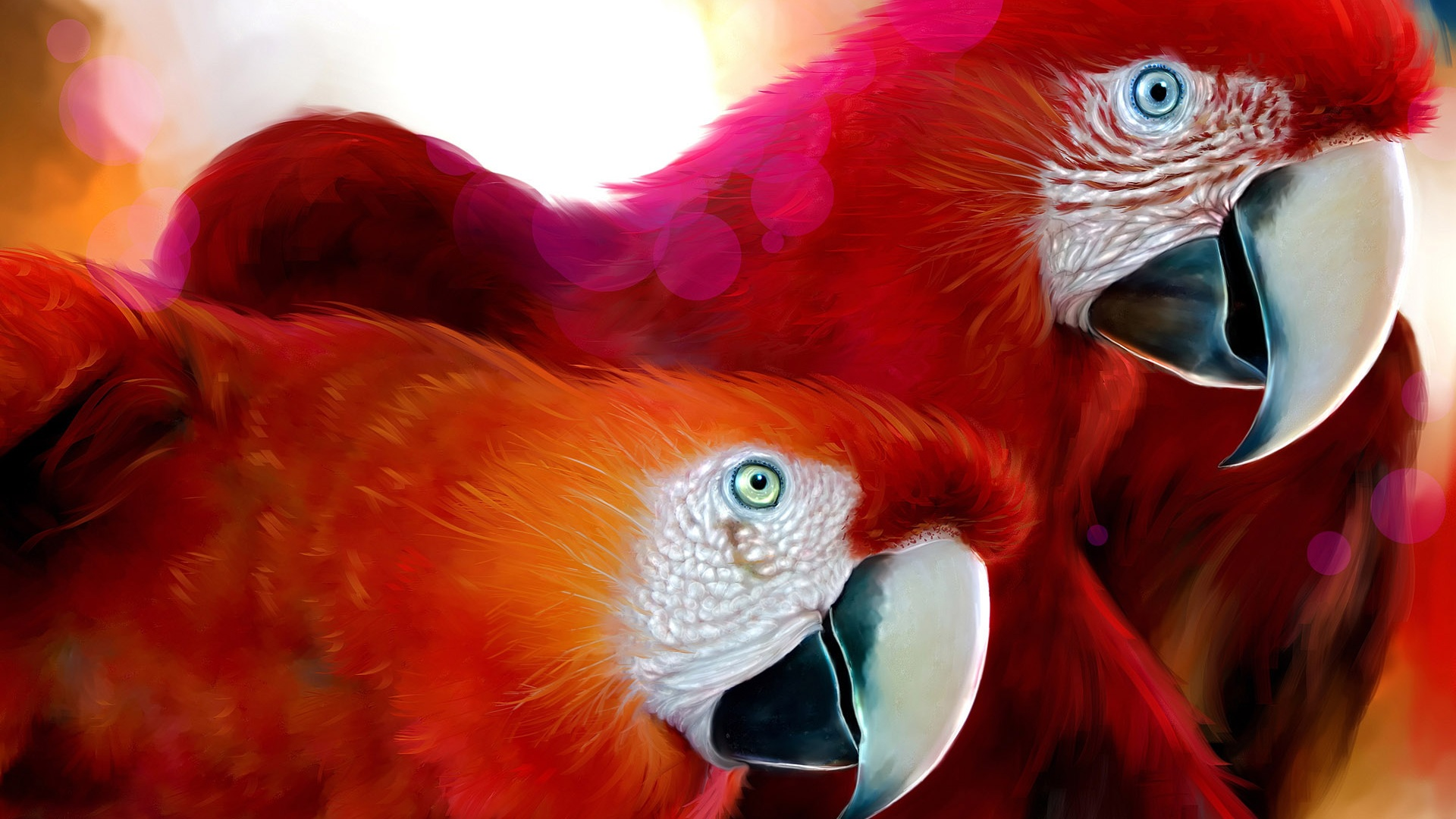 http://best-wallpaper.net/wallpaper/1920x1080/1105/A-pair-of-red-parrot_1920x1080.jpg