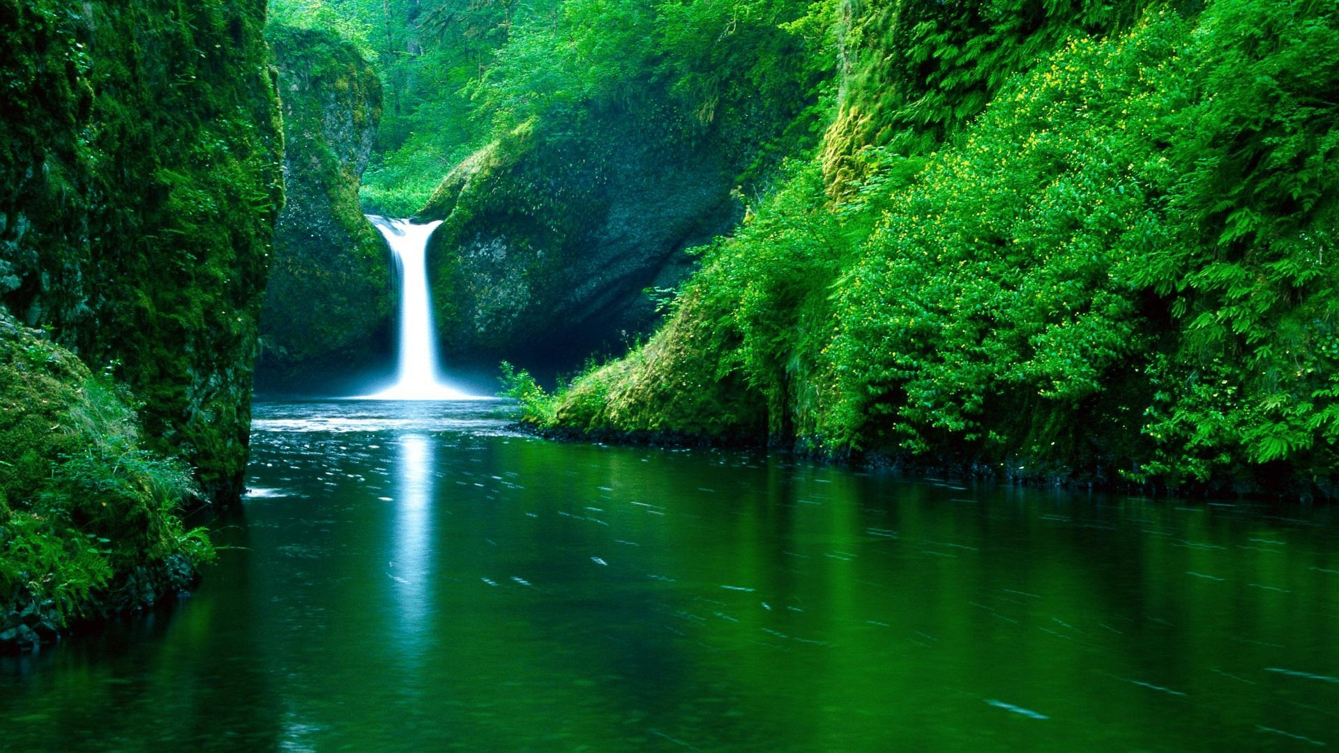 Wallpaper Waterfall River Green 1920x1080 Full Hd 2k Picture Image