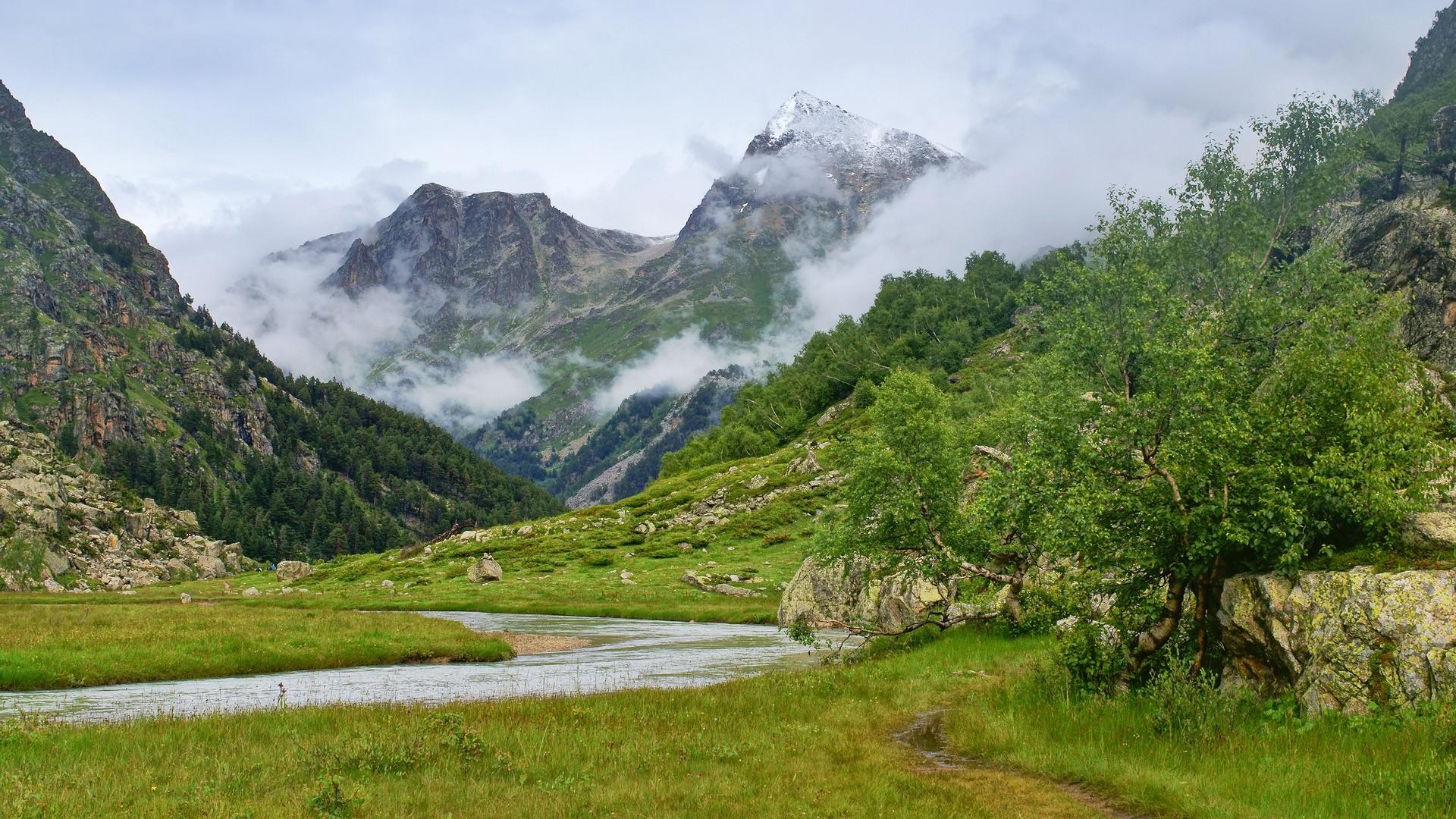 природа горы скалы трава деревья подборки