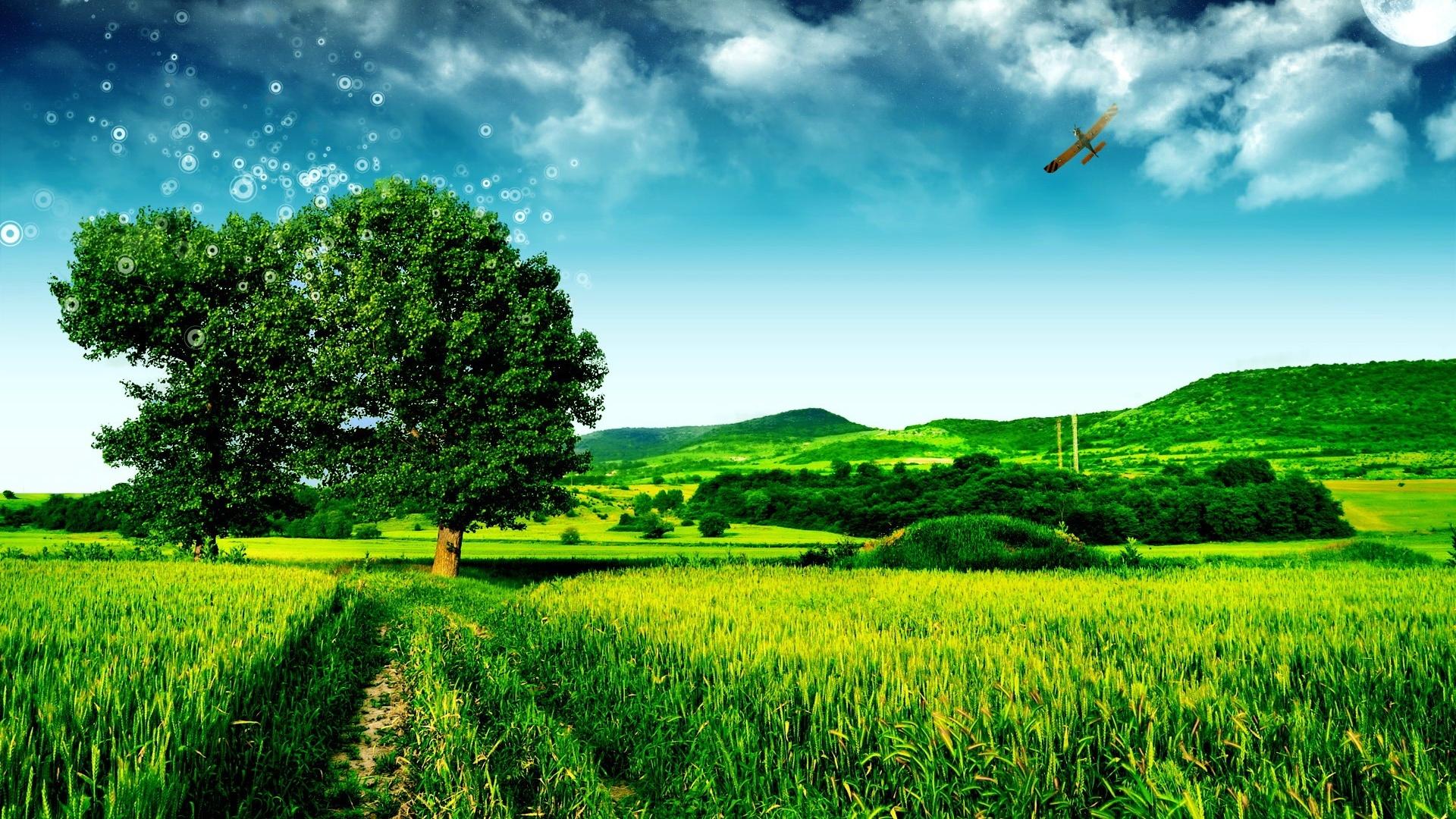 Wallpaper Dream Green Landscape 1920x1200 Hd Picture Image