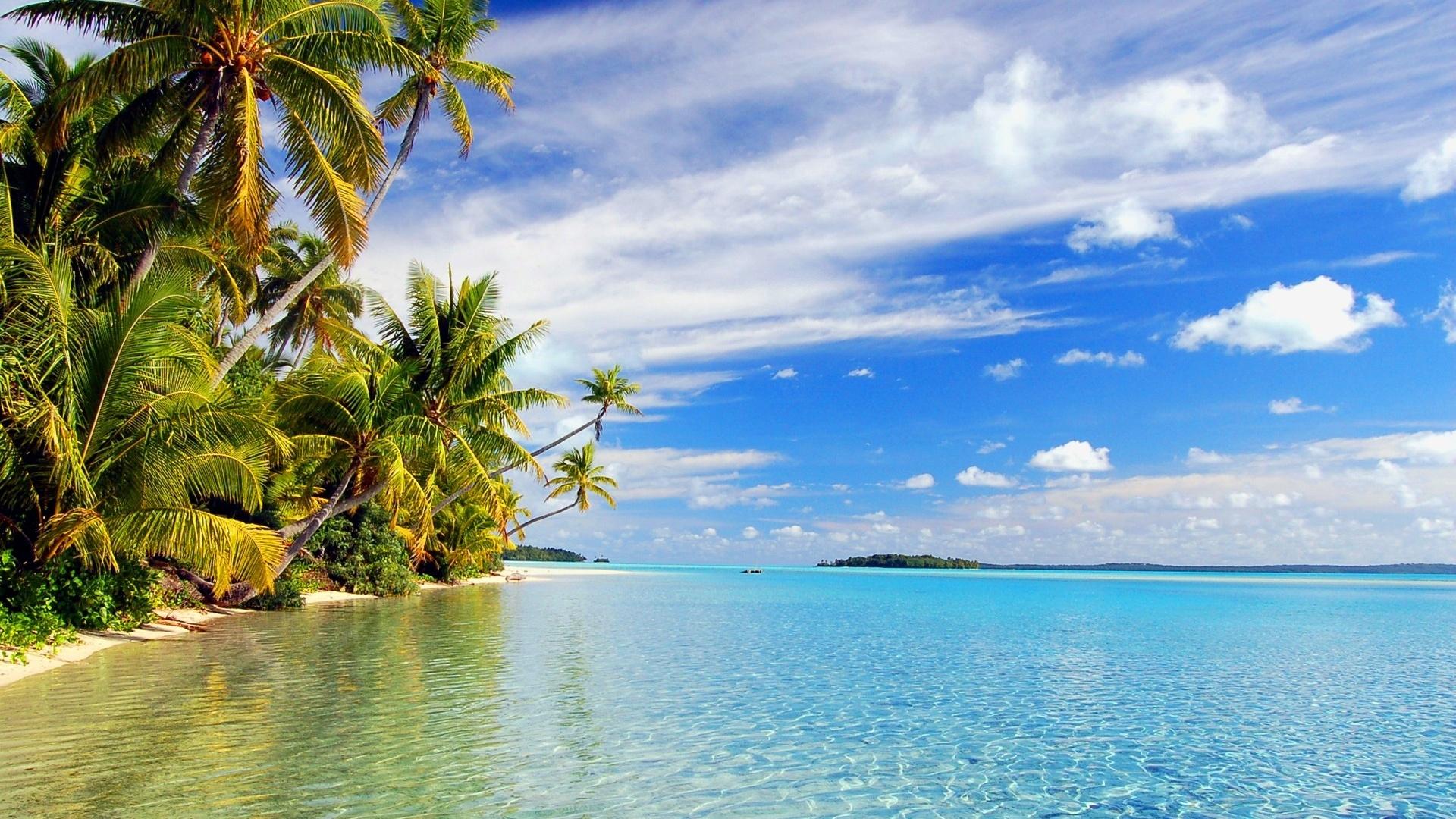 Tropical beach Wallpaper | 1920x1080 Full HD resolution ...