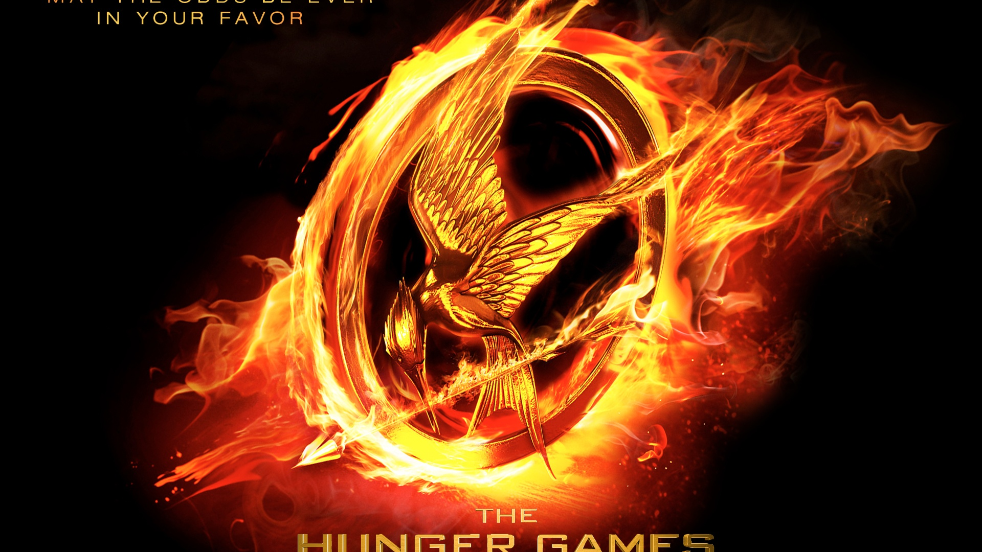 The Hunger Games 640x1136 Iphone 5 5s 5c Se Wallpaper