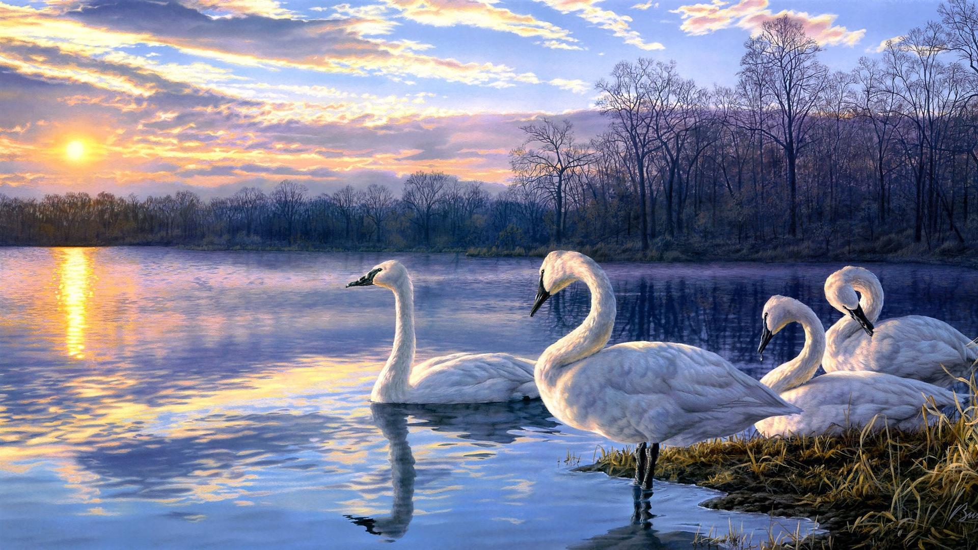 Wallpaper Art painting swan lake sunset landscape 2560x1440 QHD Picture, Image