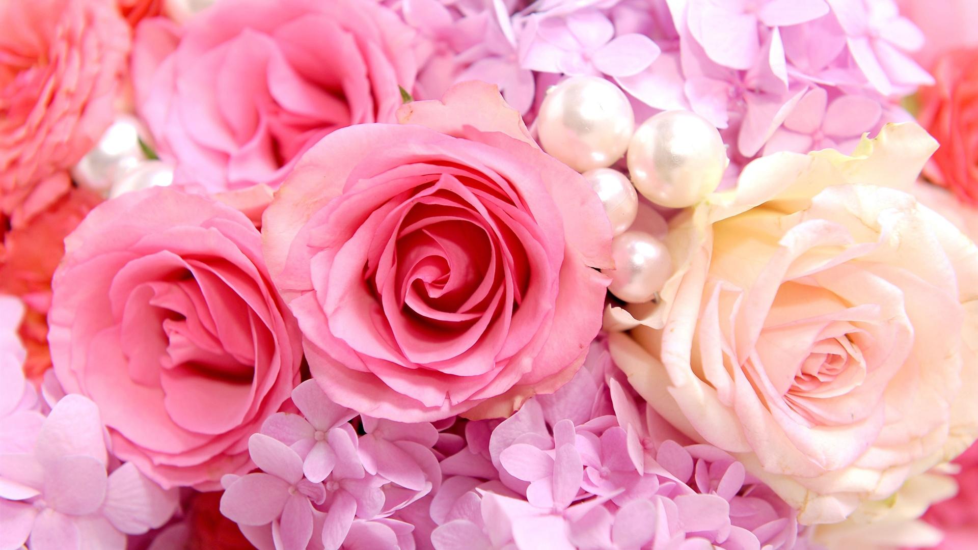 壁紙 ピンクのバラの背景 2560x1600 HD 無料のデスクトップの背景, 画像