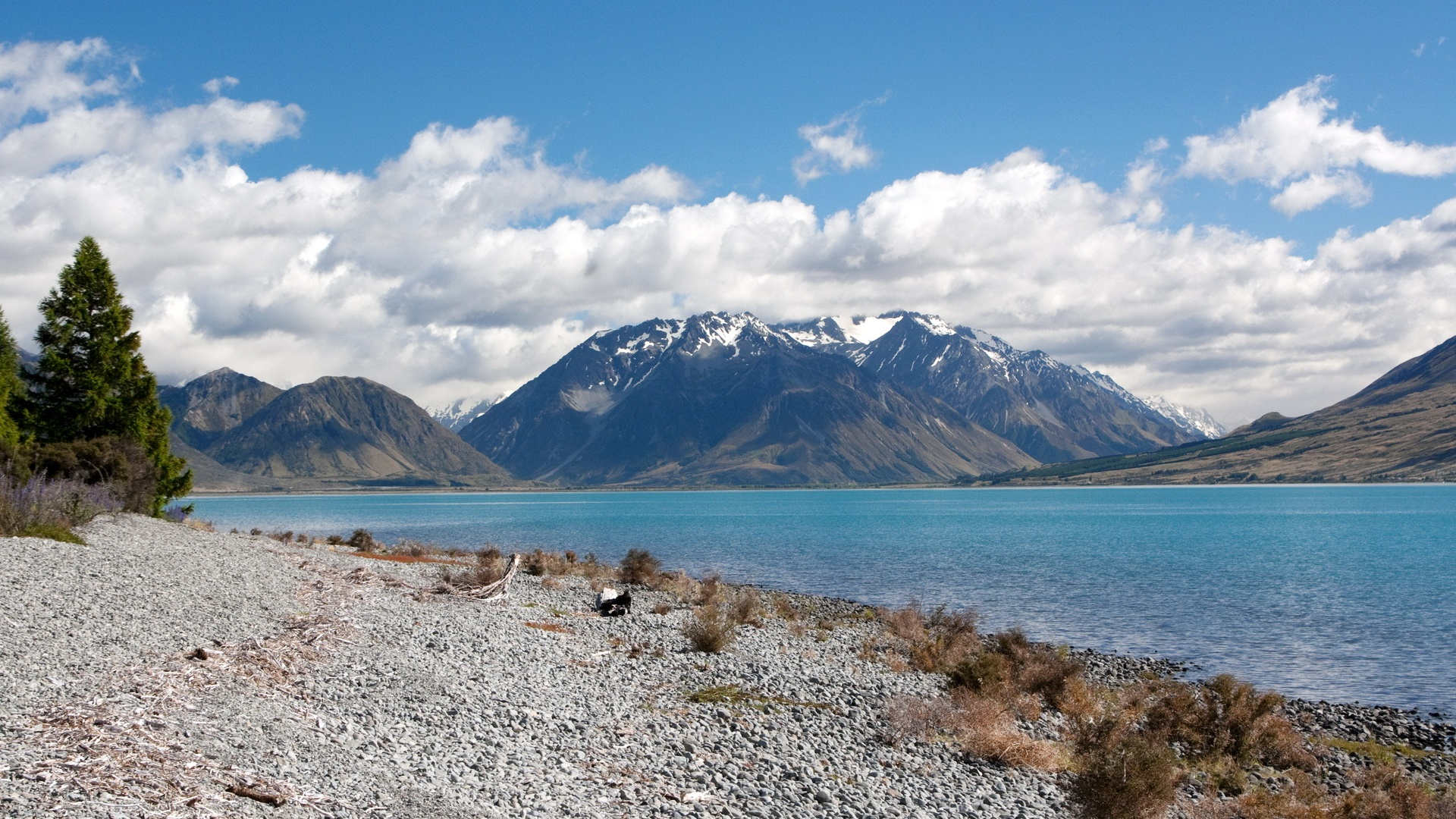 Wallpaper Rivers Of New Zealand 1920x1200 Hd Picture Image