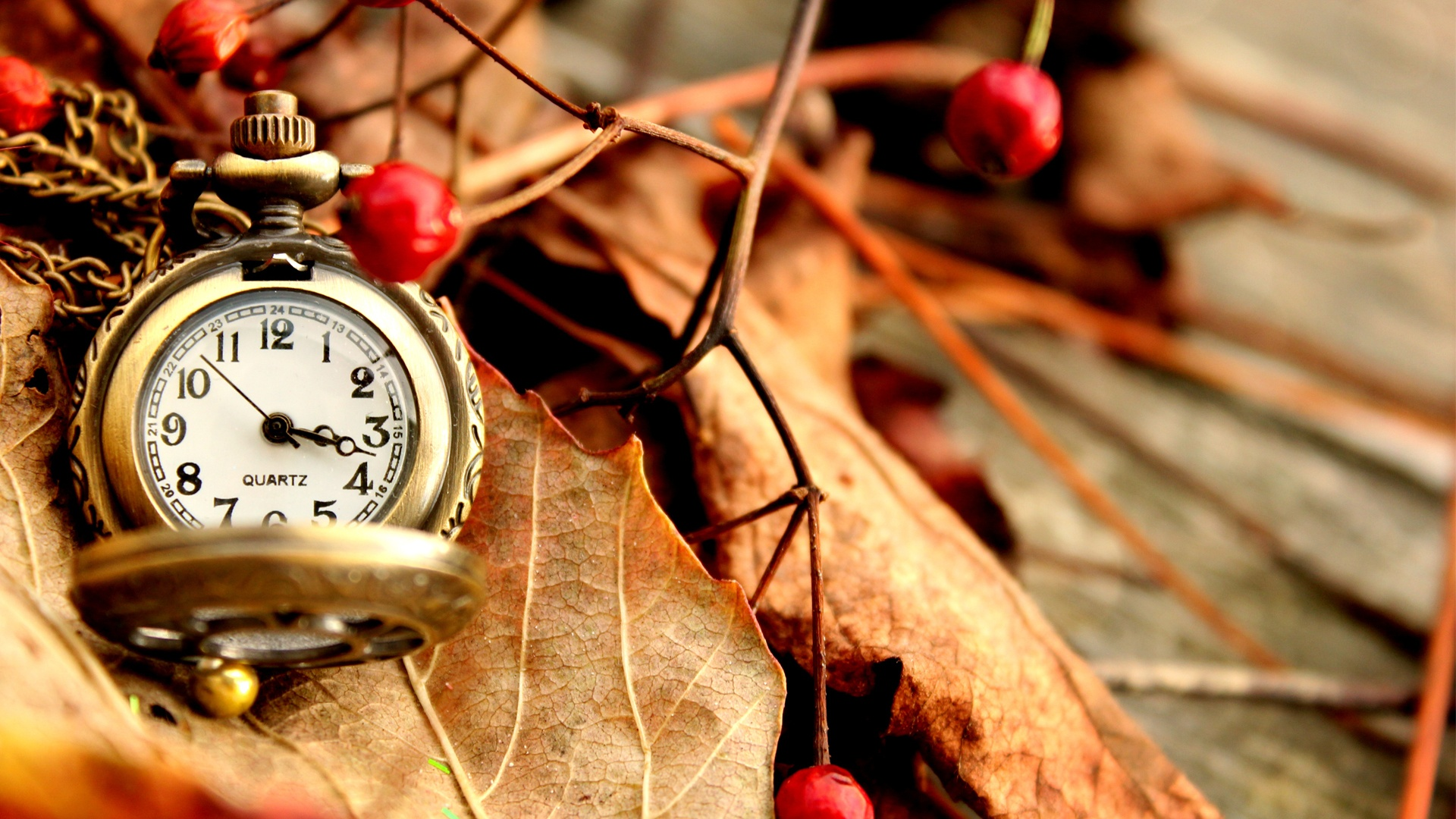 relojes full hd - photo #43