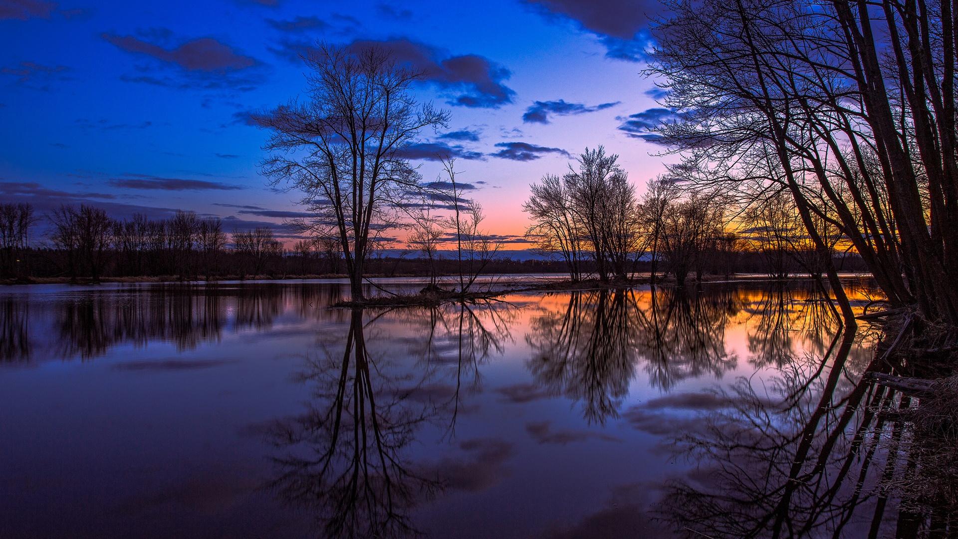 カナダオンタリオ州 湖の反射 木 夕日 美しい風景 640x1136 Iphone 5 5s 5c Se 壁紙 背景 画像