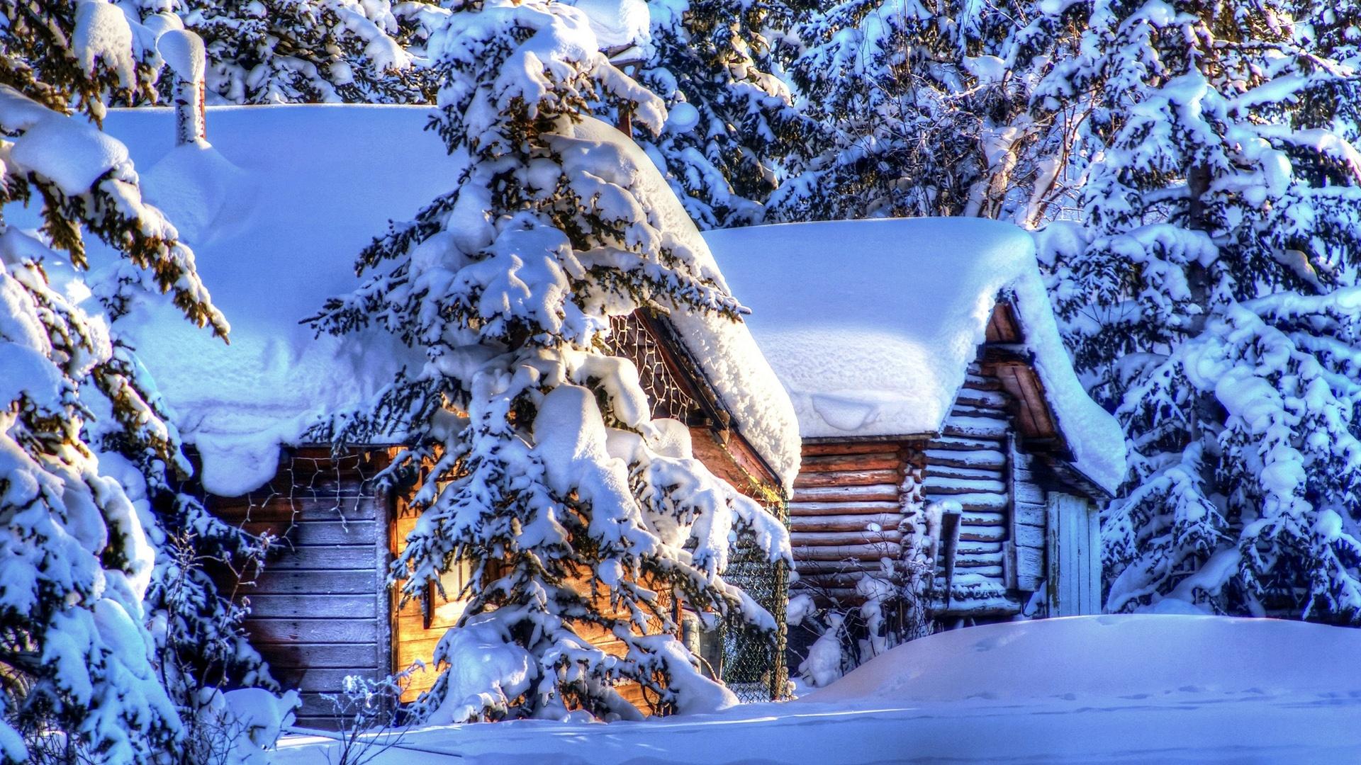 alaska paysage d 39 hiver neige for t sapin cabanes fonds. Black Bedroom Furniture Sets. Home Design Ideas