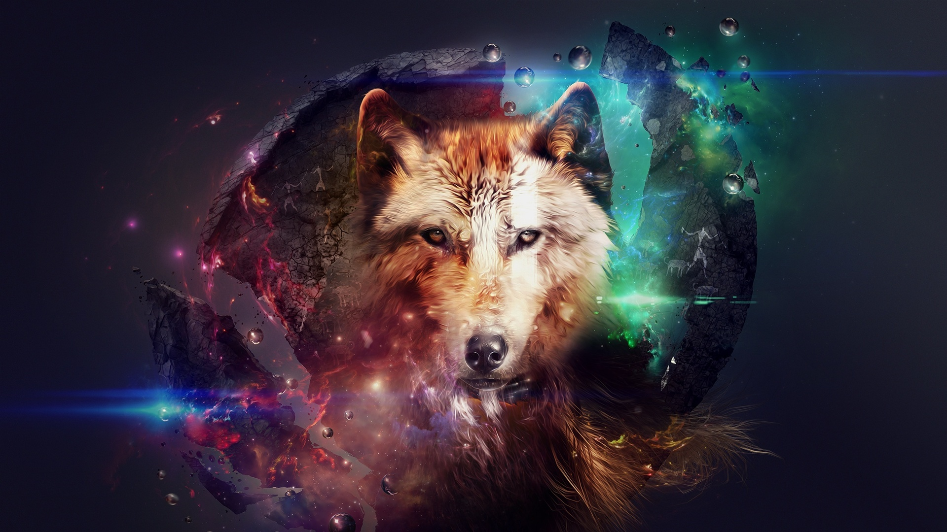 Colorful animals wallpaper