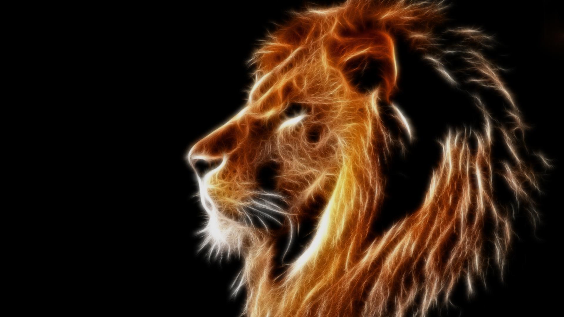 light lion wallpaper - photo #6
