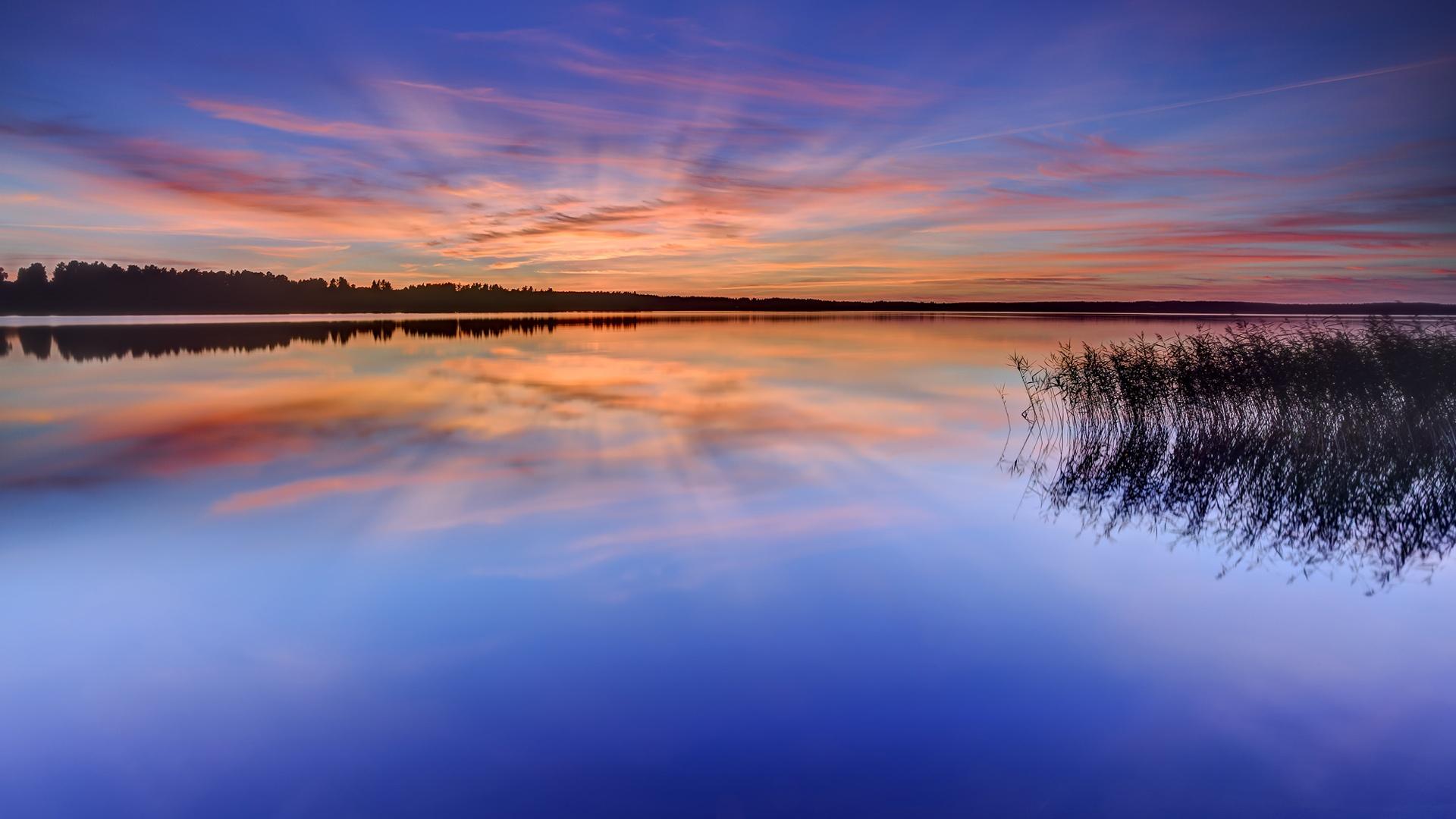 ダウンロード壁紙 1920x1080 スウェーデン、カールスタード、湖、水、草、木、夜、日没、反射 フルHD HDのデスクトップの背景