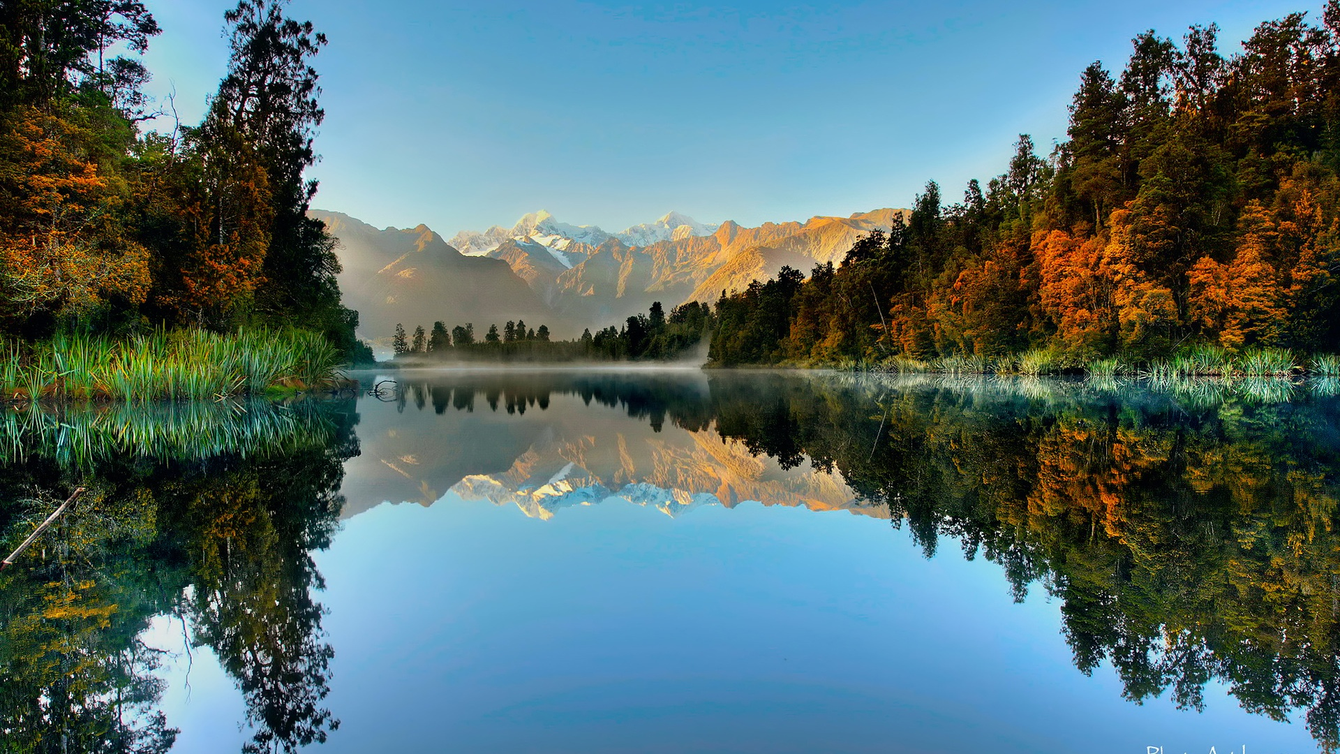Pelaku Penembakan New Zealand Wallpaper: 壁纸 新西兰西部国家公园,福克斯冰川,湖泊,山脉,森林 1920x1200 HD 高清壁纸, 图片, 照片