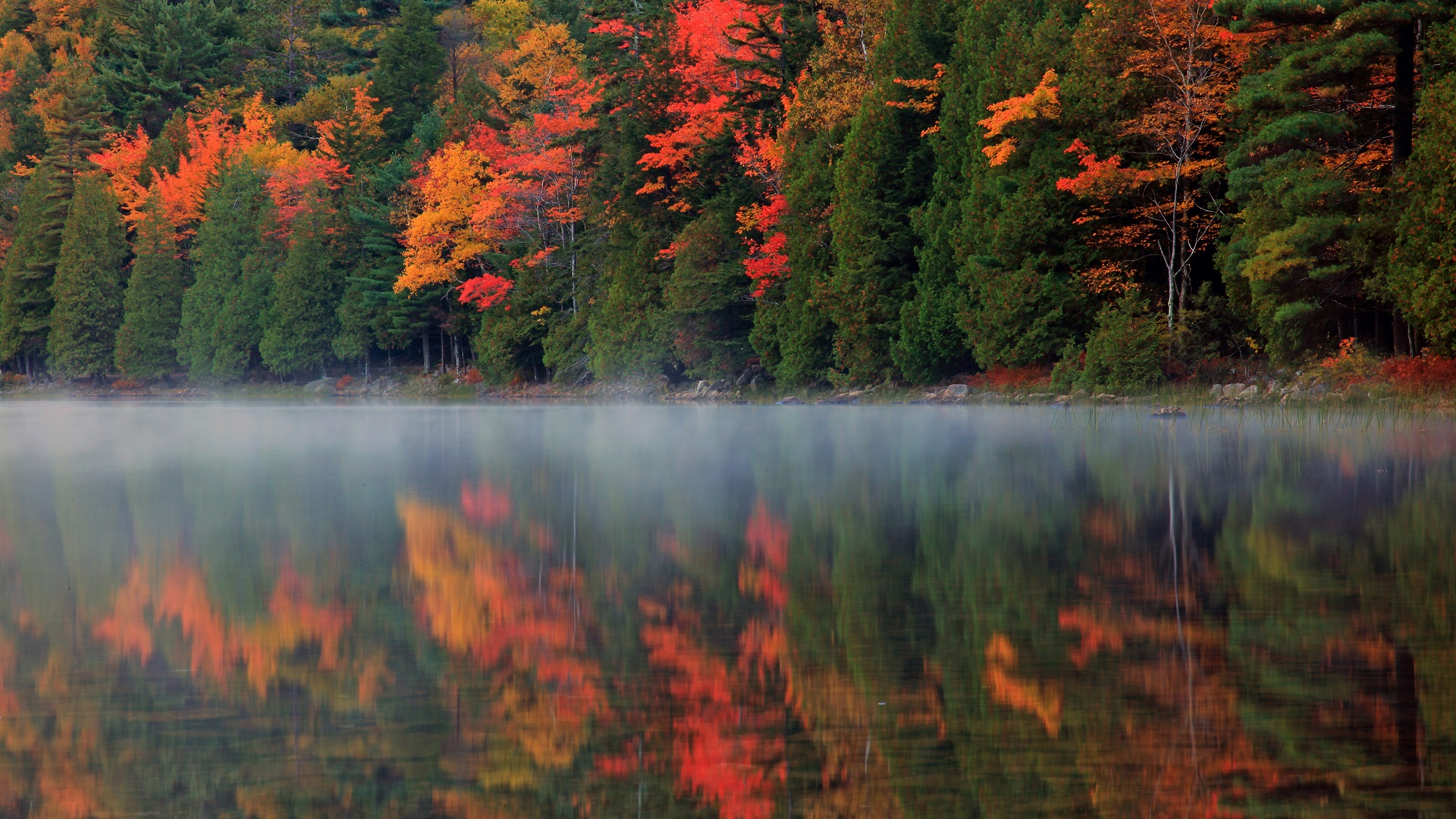 autumn nature river - photo #9