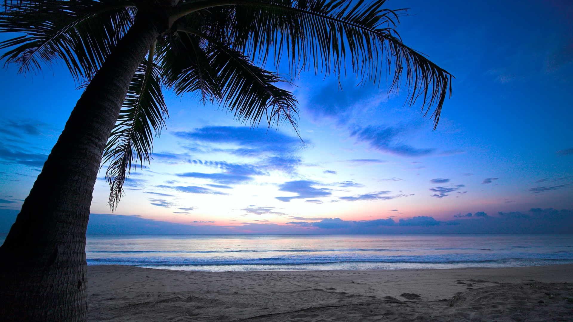 Wallpaper Caribbean Sea Beach Sunset Palm Trees Hd 5k: 壁紙 トロピカル、ヤシの木、曇り空、カリブ海、海、海岸、夜明け、日光 2560x1600 HD 無料のデスクトップの