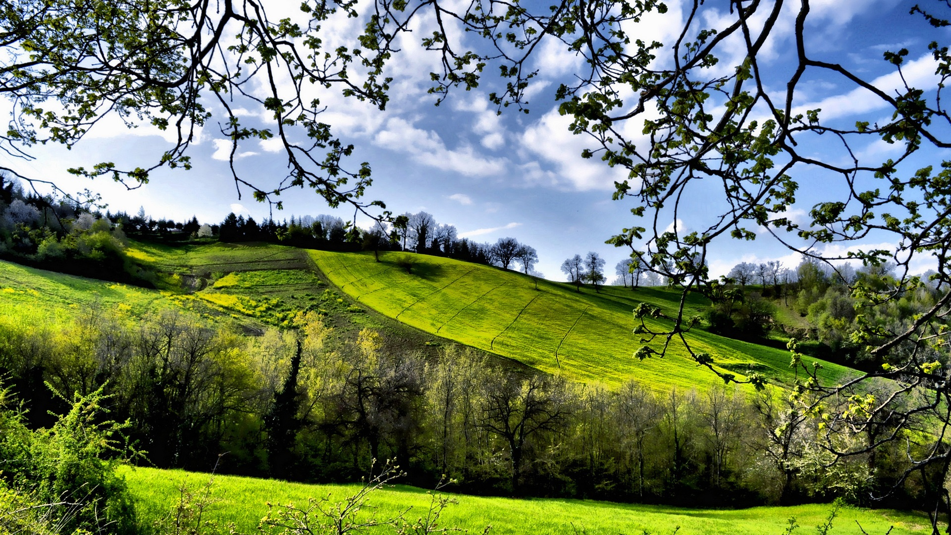 spring natural scenery hd - photo #20
