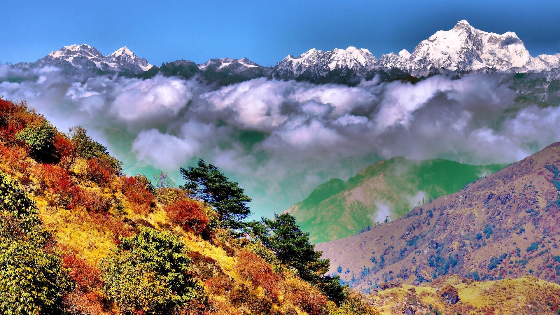 Bandhavgarh National Park Madhya Pradesh India National park pictures in india