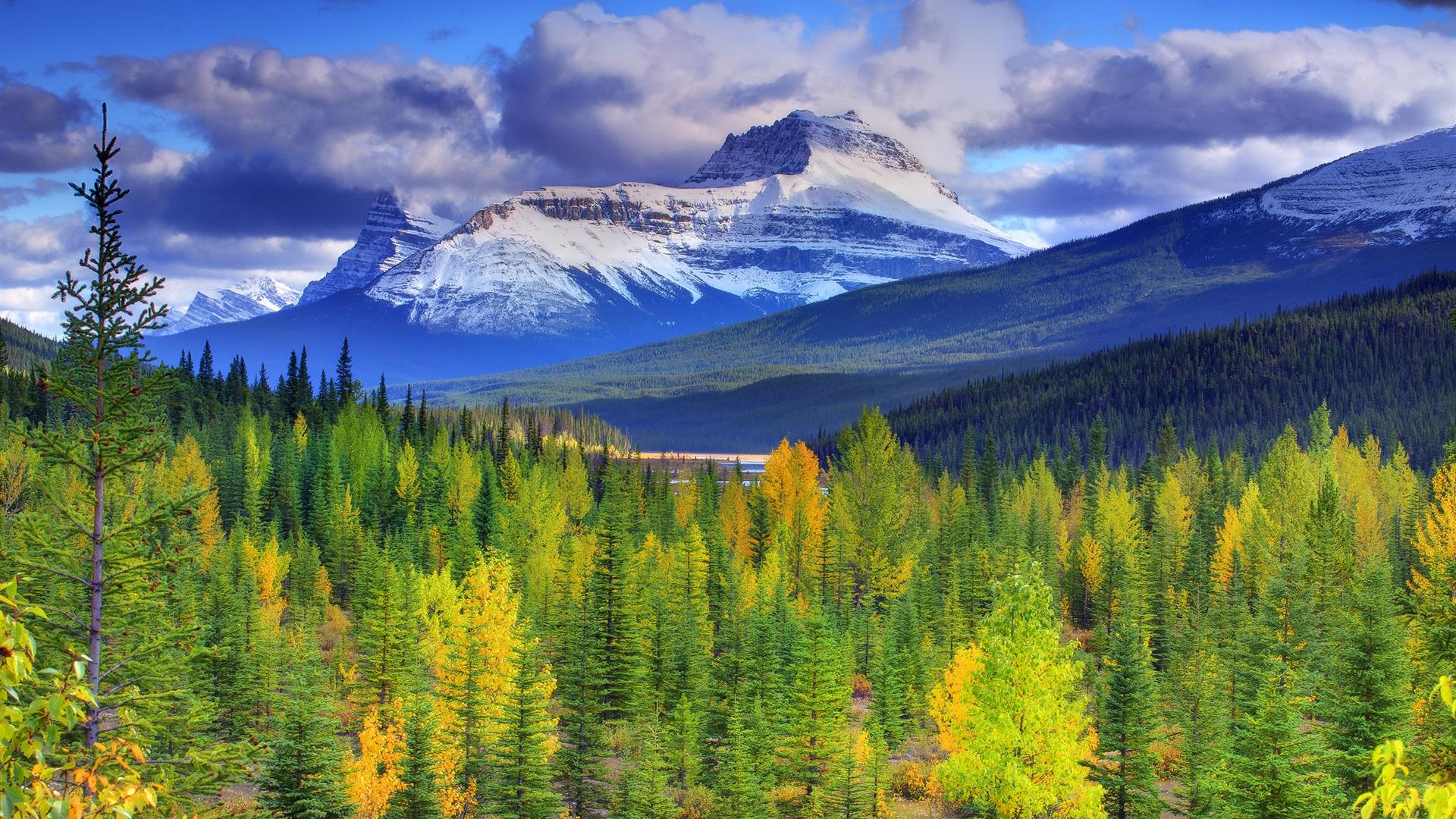 バンフ国立公園の画像 p1_9