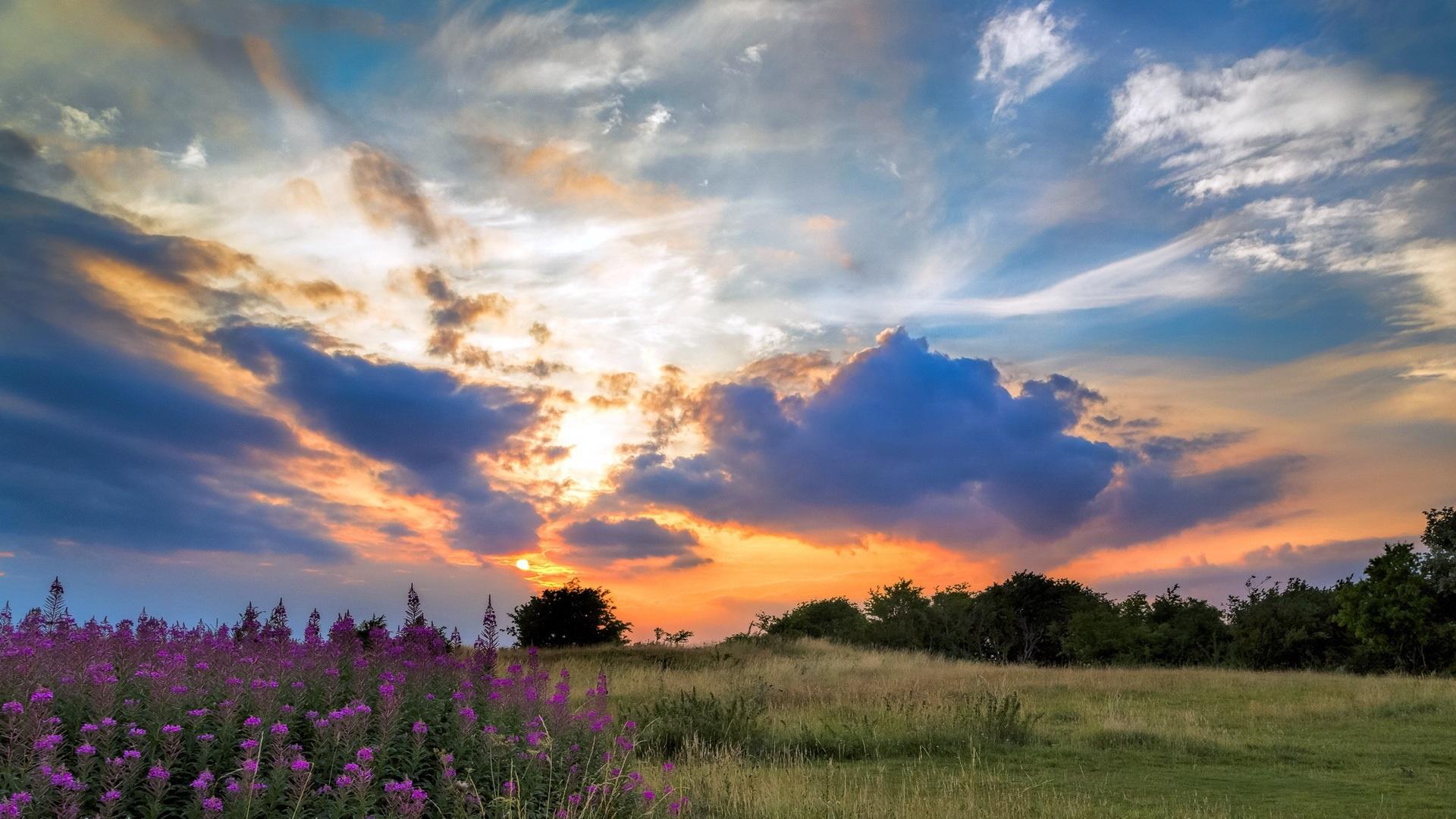 закат тучи простор холмы поля трава на телефон