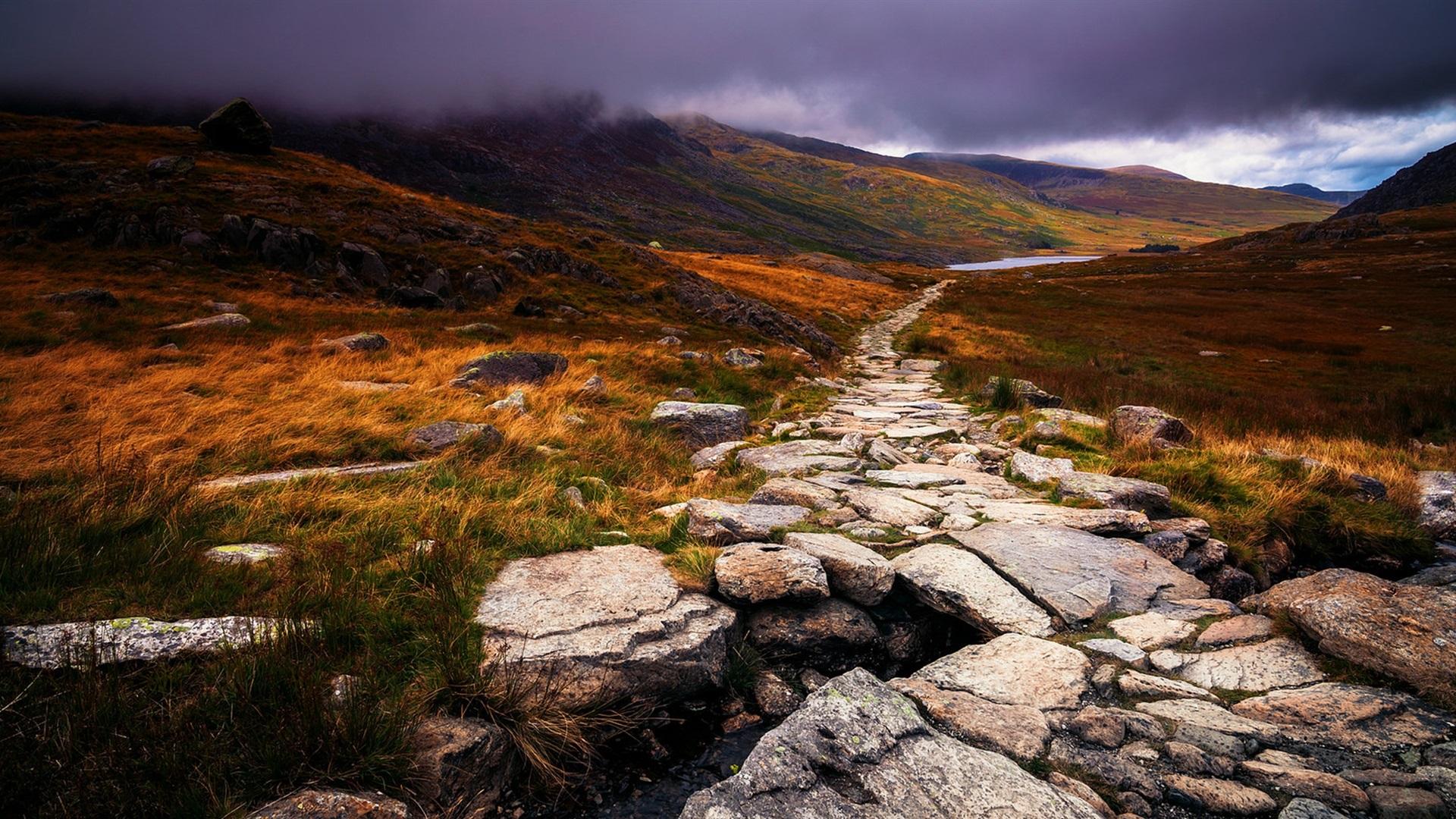 stone path wallpaper - photo #4