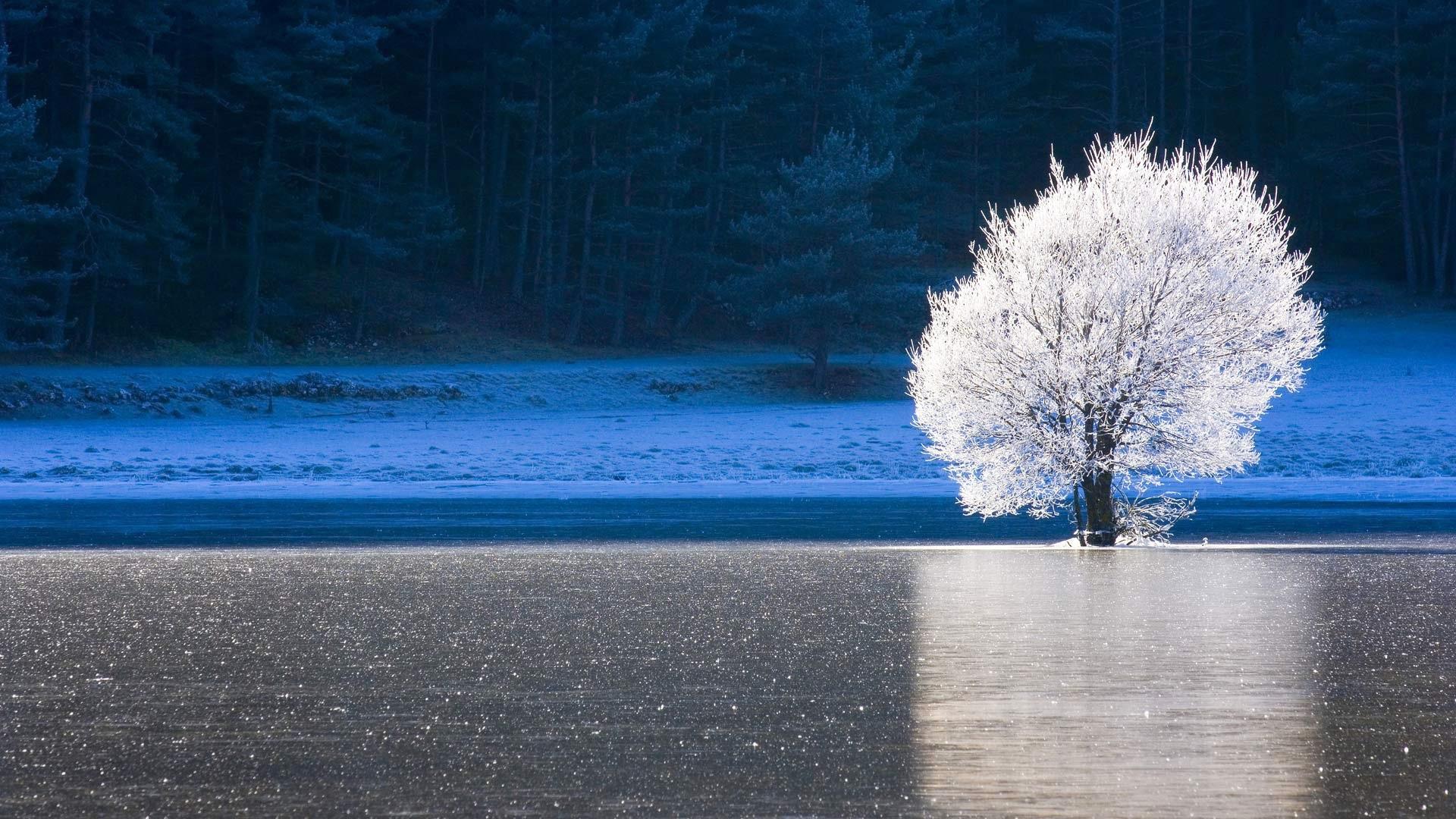 озеро зима иней the lake winter frost  № 580093  скачать