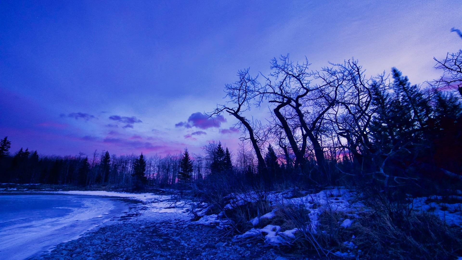 壁纸 冬季,黎明,发光,树,雪,湖 1920x1200 HD 高清壁纸, 图片, 照片