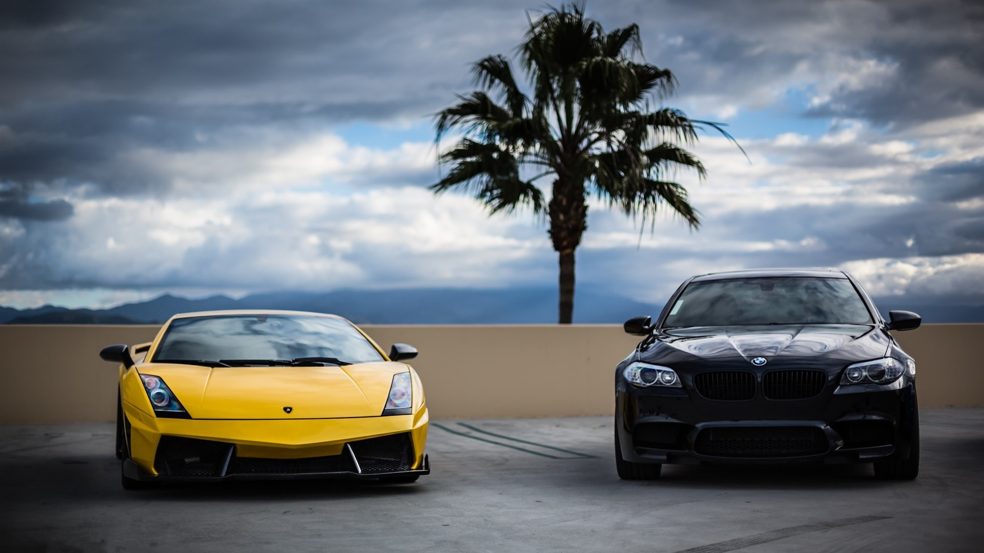Wallpaper Yellow Lamborghini And Black Bmw Cars Front View 1920x1080 Full Hd 2k Picture Image