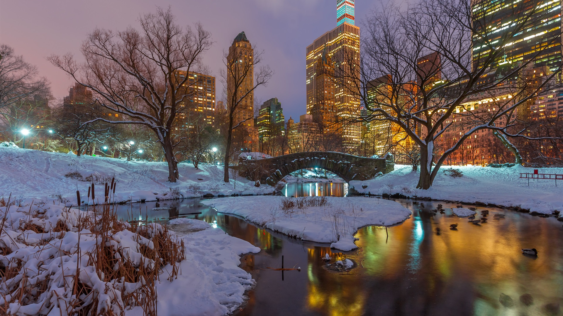 Download wallpaper 1920x1080 new york central park snow - Nyc winter wallpaper hd ...