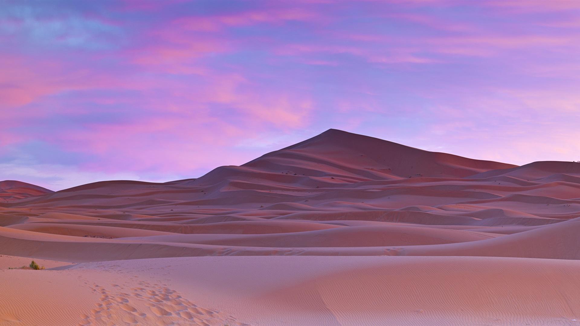 ... del Sahara, palmeras, Marruecos Fondos de pantalla - 1920x1080 Full HD